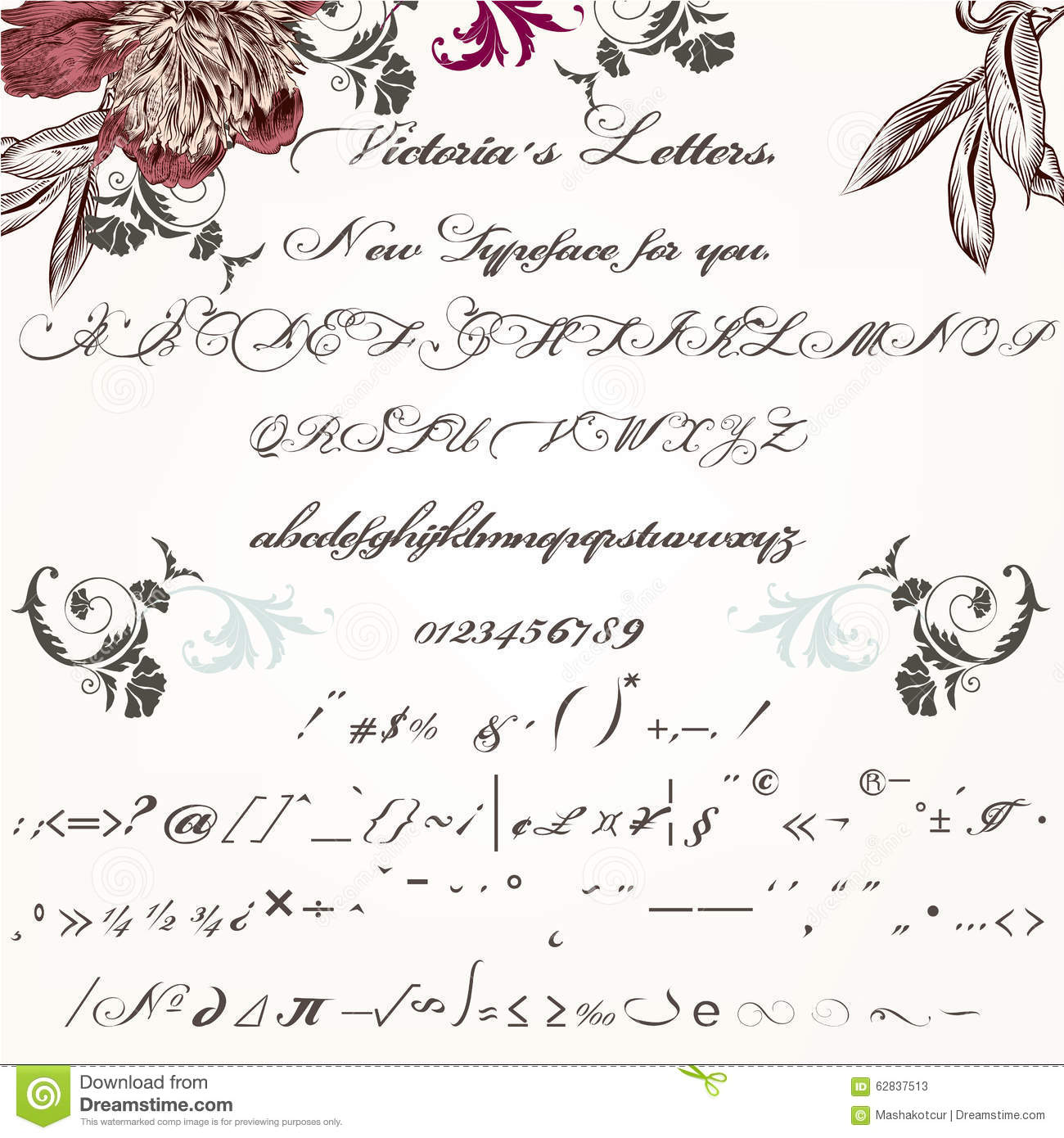 beautiful hand made script typeface or font in vintage victorian stock vector