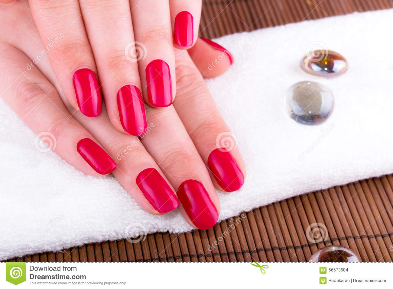 Beautiful Hands With French Nails Stock Photo - Image of fashion ...