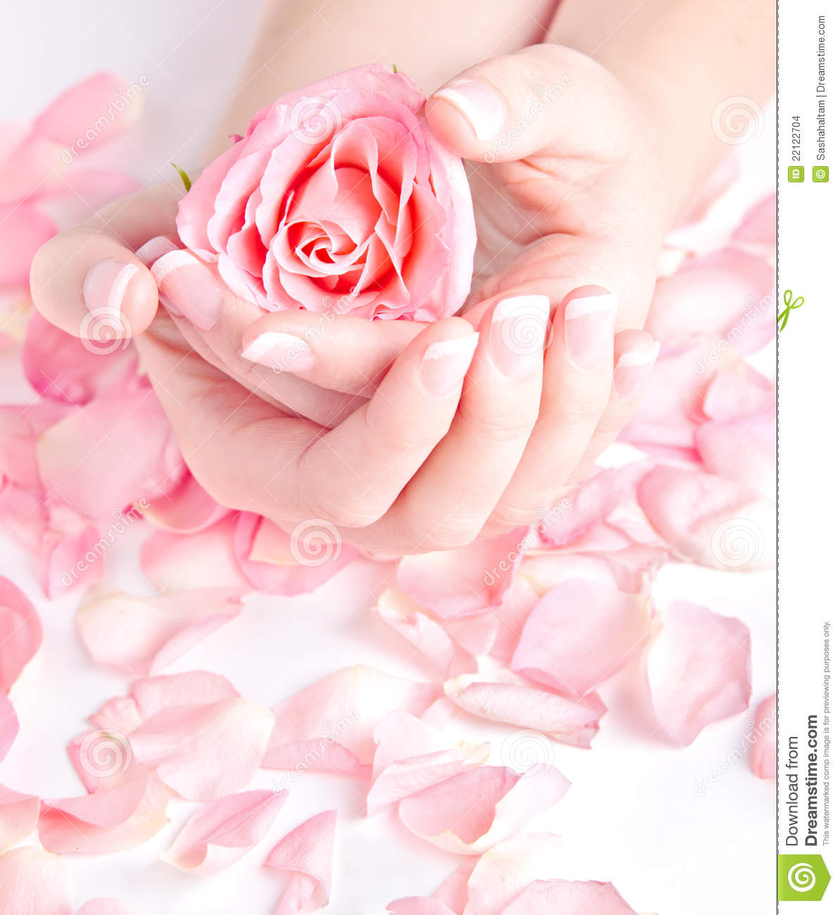 More similar stock images of ` Beautiful hands holding rose `