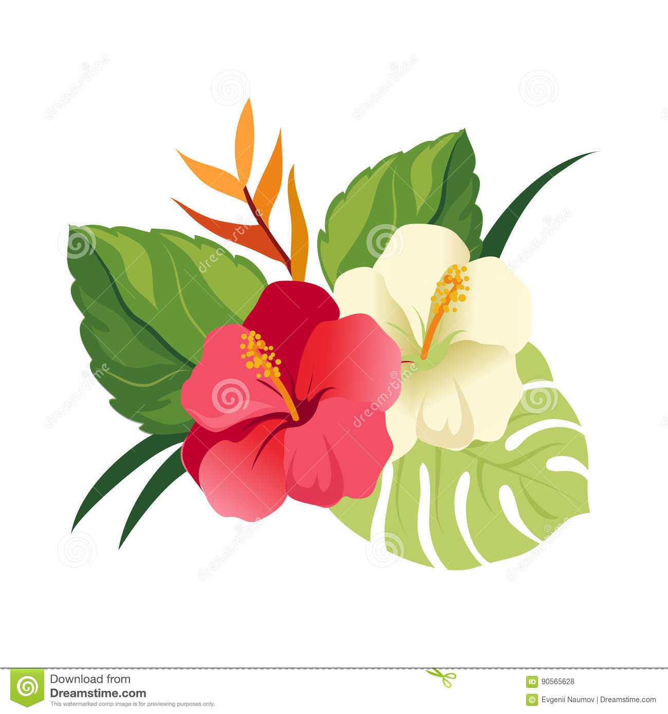 Beautiful Hibiscus Flowers And Palm Leaves Elegant Floral Vector