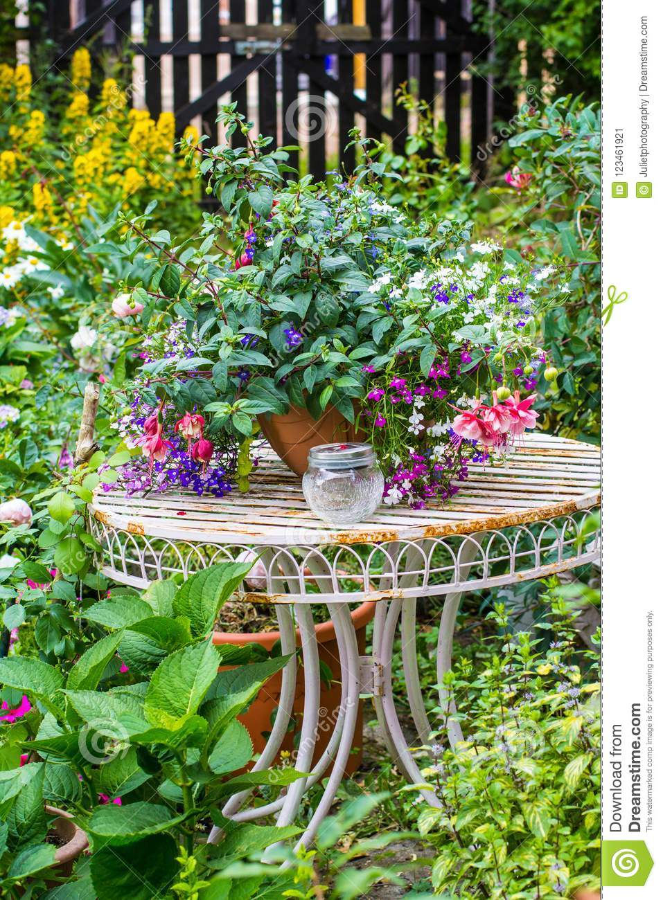Beautiful Home Garden With Lots Of Blooming Flowers Plants And