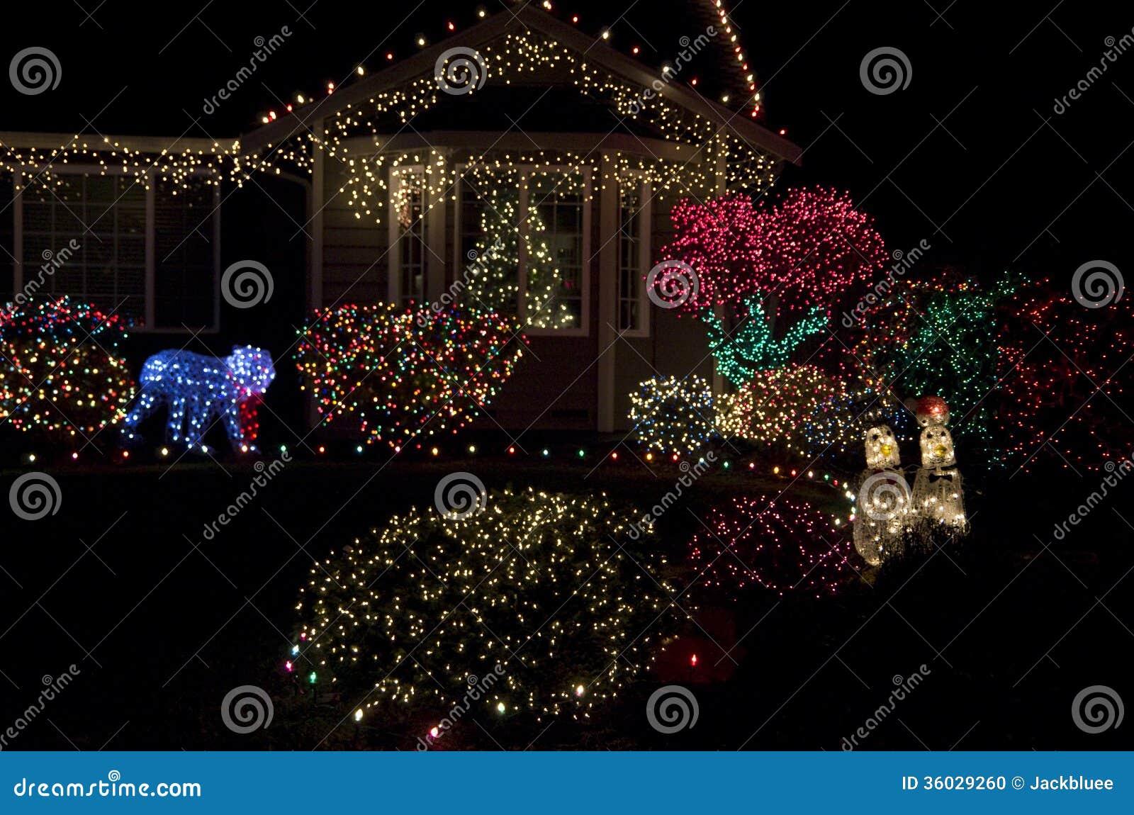 Led Lights For Christmas Trees