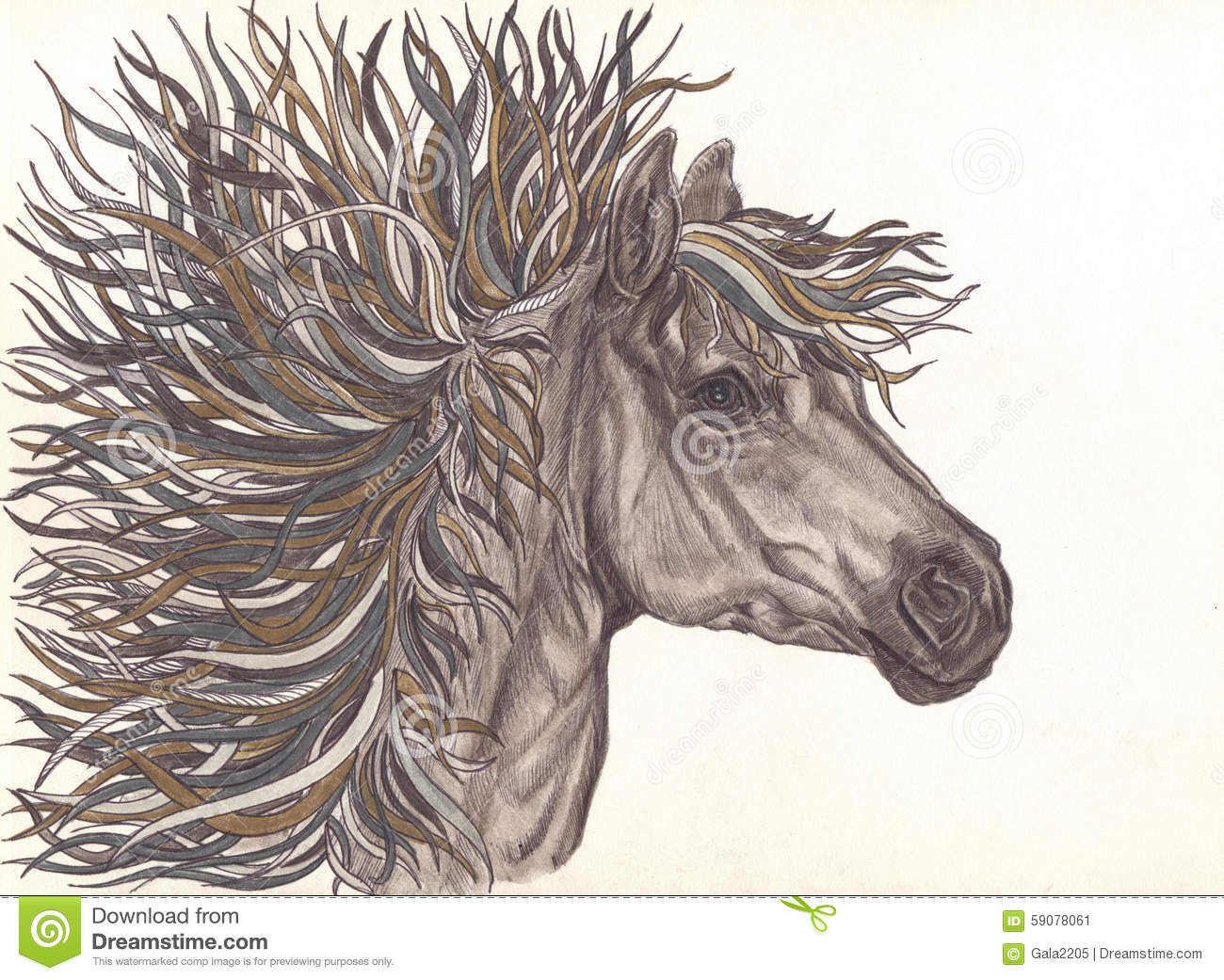 Beautiful Horse With Bright Colorful Mane Drawning By Pencil Close Up Stock Illustration Illustration Of Line Horse 59078061