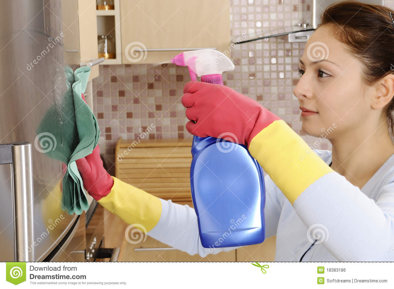 Cleaning The House beautiful housewife cleaning the house royalty free stock image
