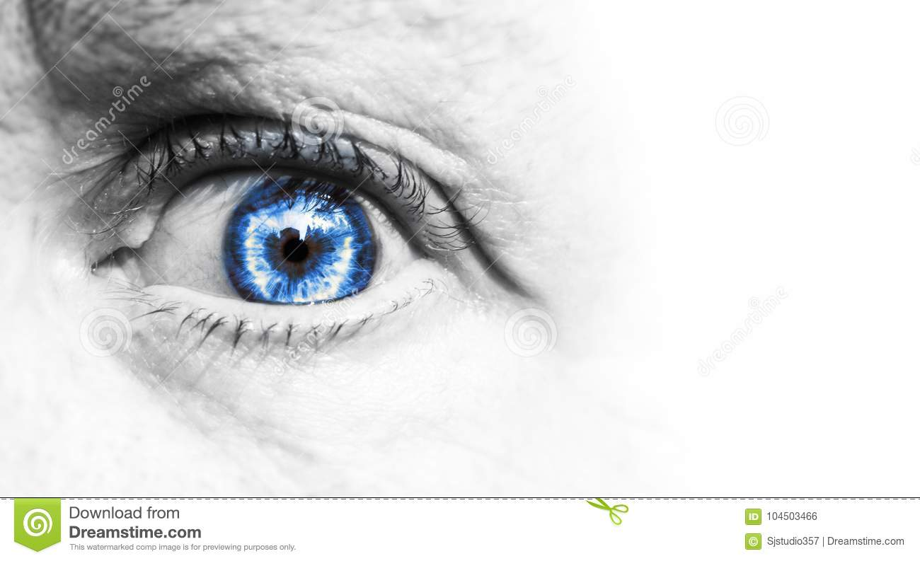 Beautiful human blue eye, macro, close up green, brown. black and white isolated on a white background.