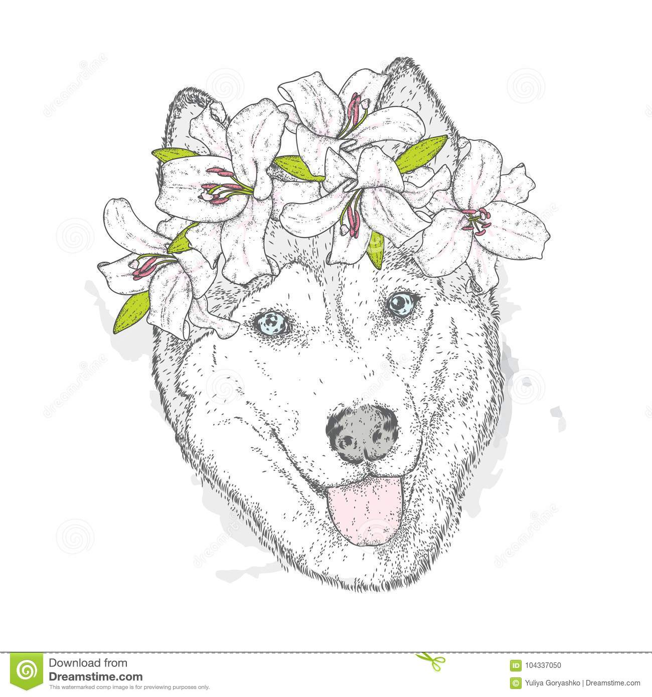 Beautiful Husky in a wreath of lilies. Lovely puppy in a flower wreath. Pedigree dog. Vector illustration.