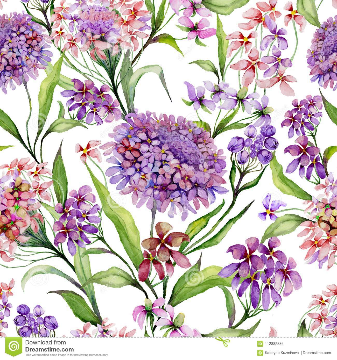 Beautiful iberis flowers with green leaves on white background. Seamless floral pattern. Watercolor painting.