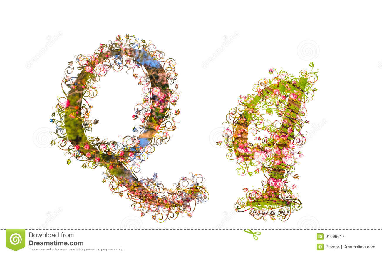 Beautiful Illustration Of Both Uppercase And Lowercase Letters M