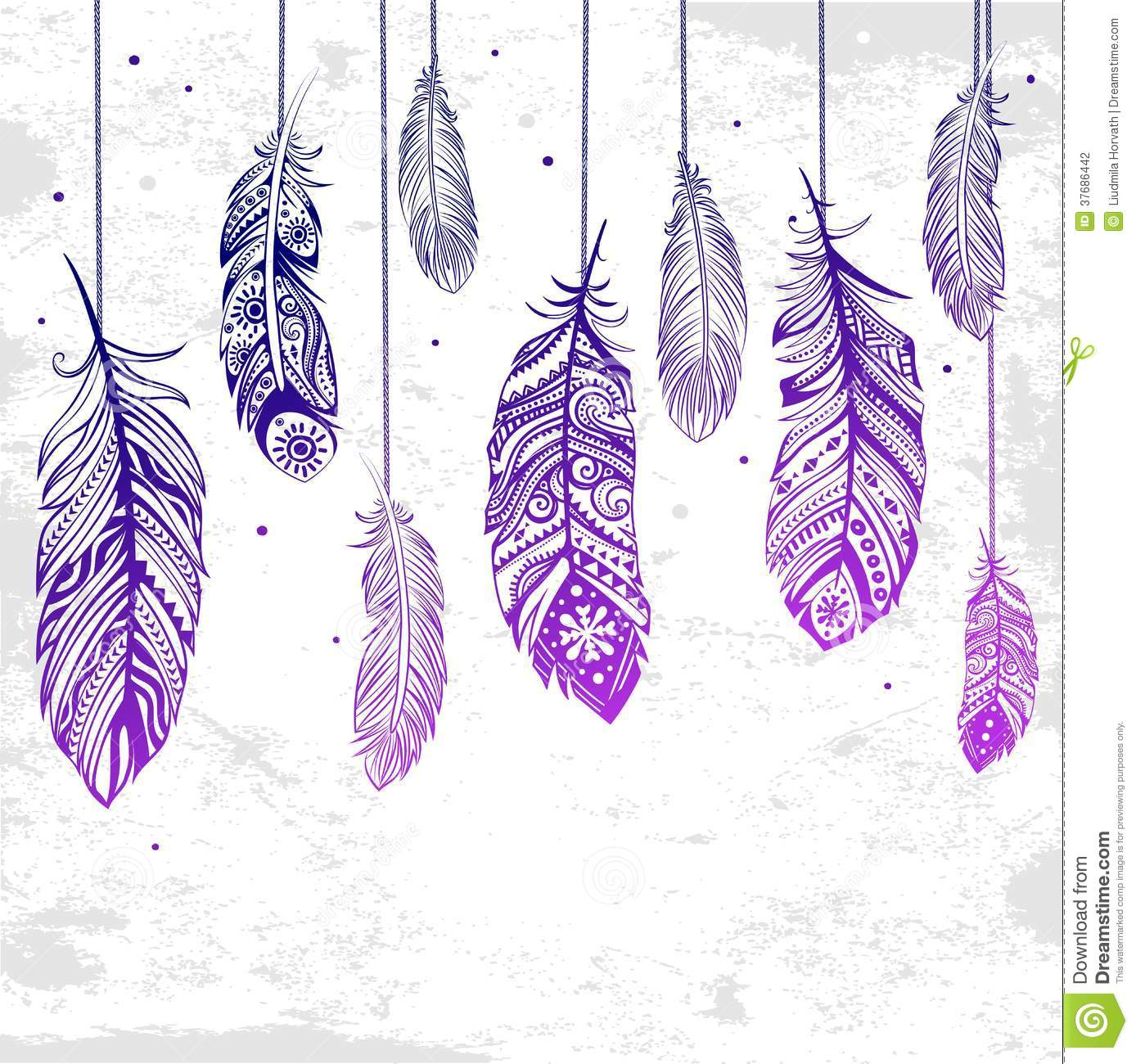 Beautiful Illustration Of Feathers Stock Photography Image 37686442