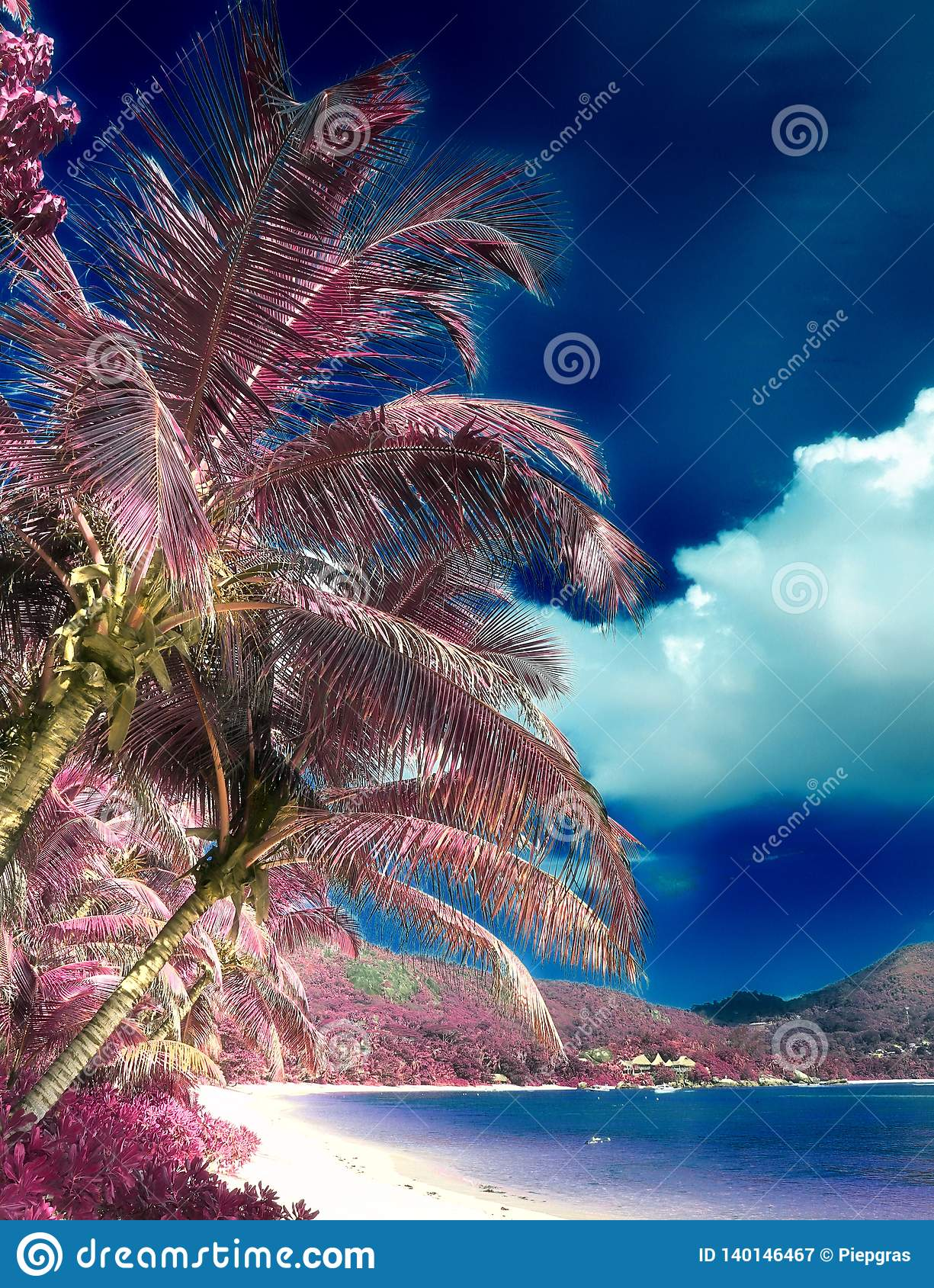 Beautiful infrared shot of palm trees on the paradise island Seychelles