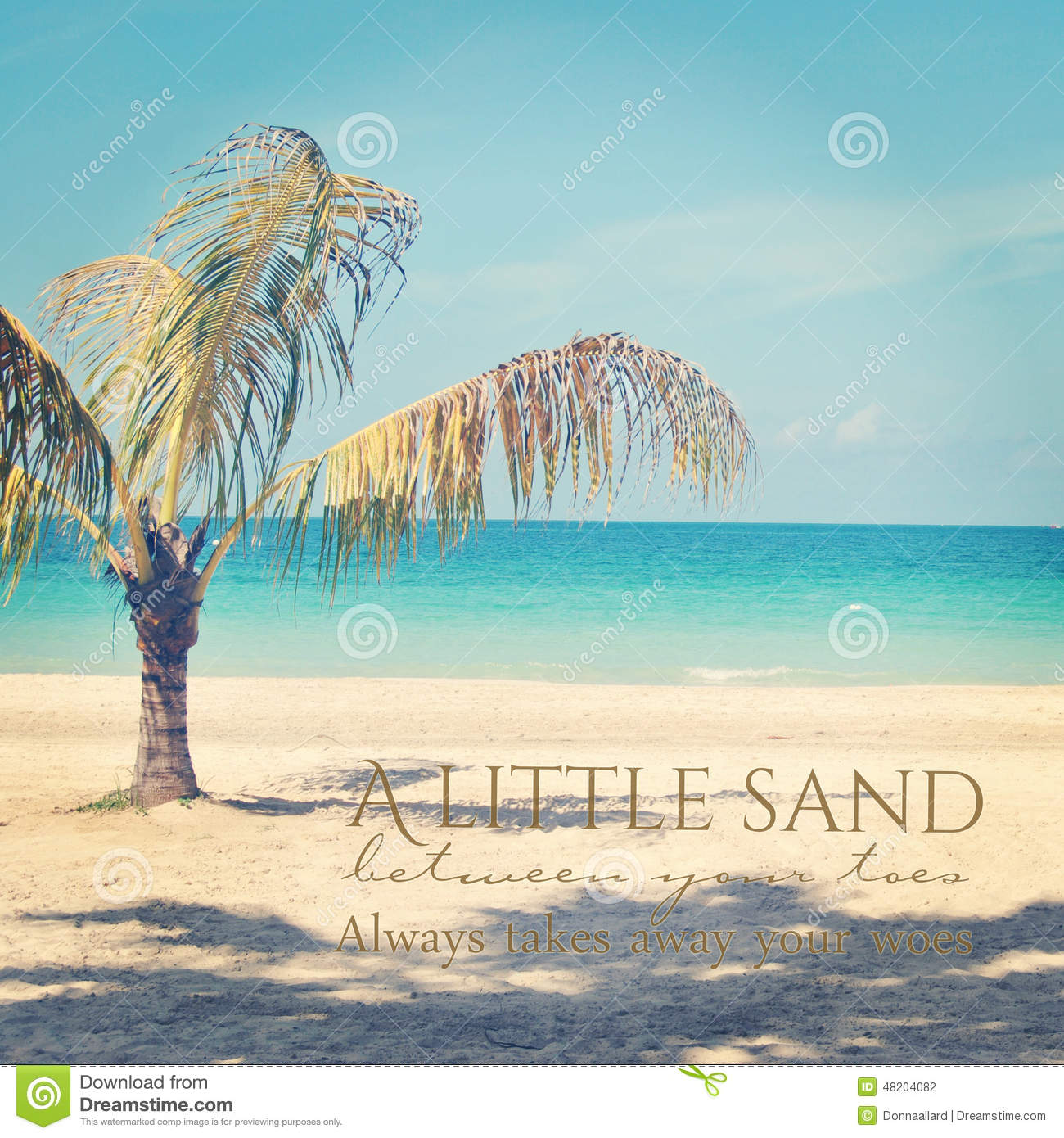 Beautiful Instagram Of Lone Palm Tree On A Tropical Beach With Stock
