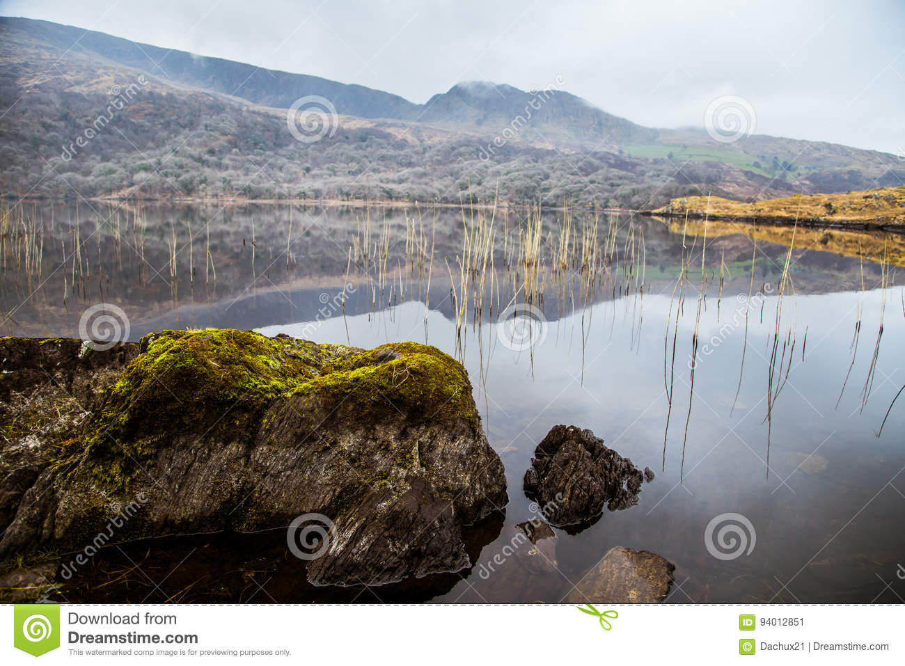 A beautiful irish mountain landscape with a lake in spring.