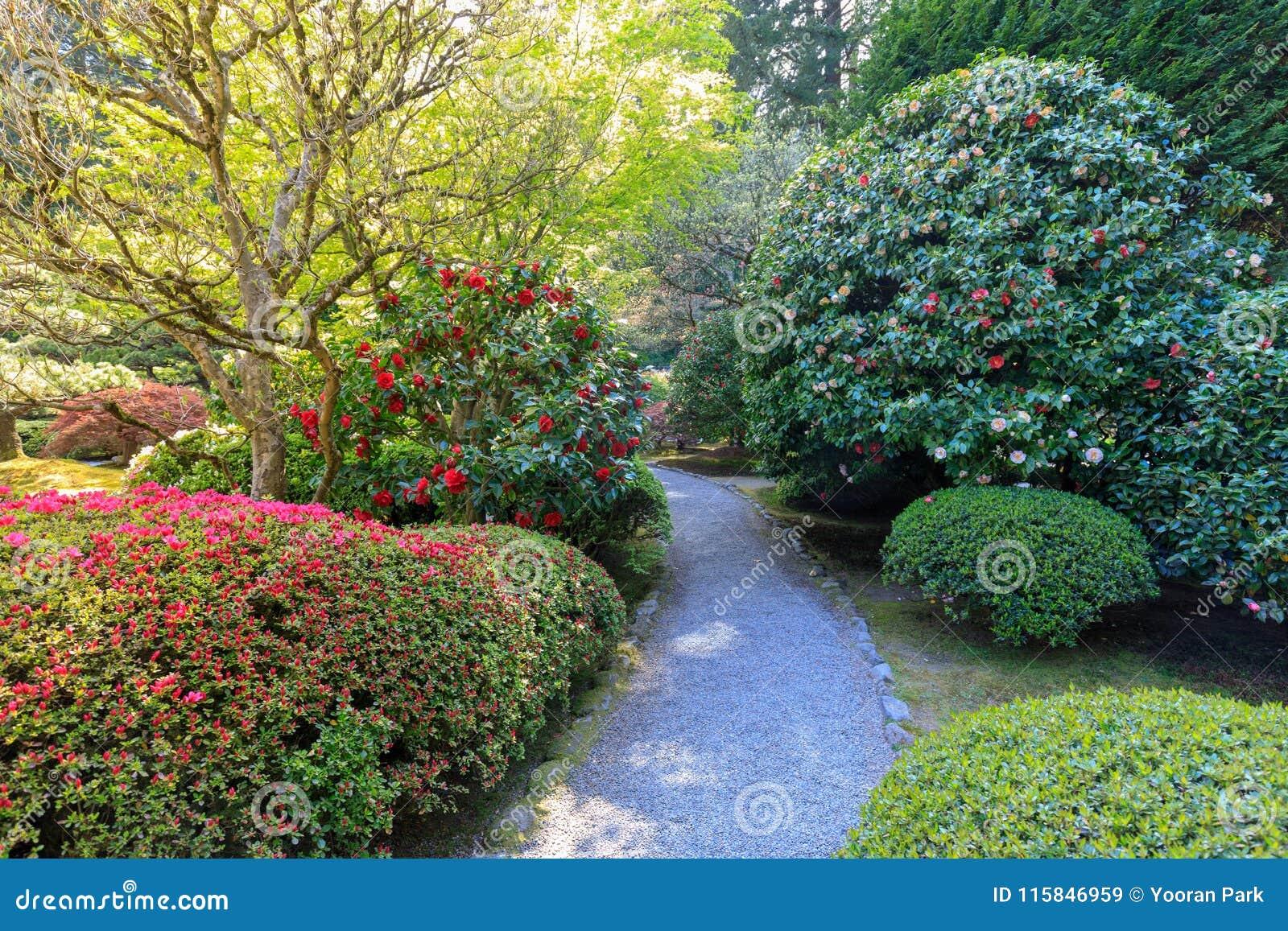 Superbe Download Beautiful Japanese Garden In Portland At Spring Season Stock Image    Image Of Theme,