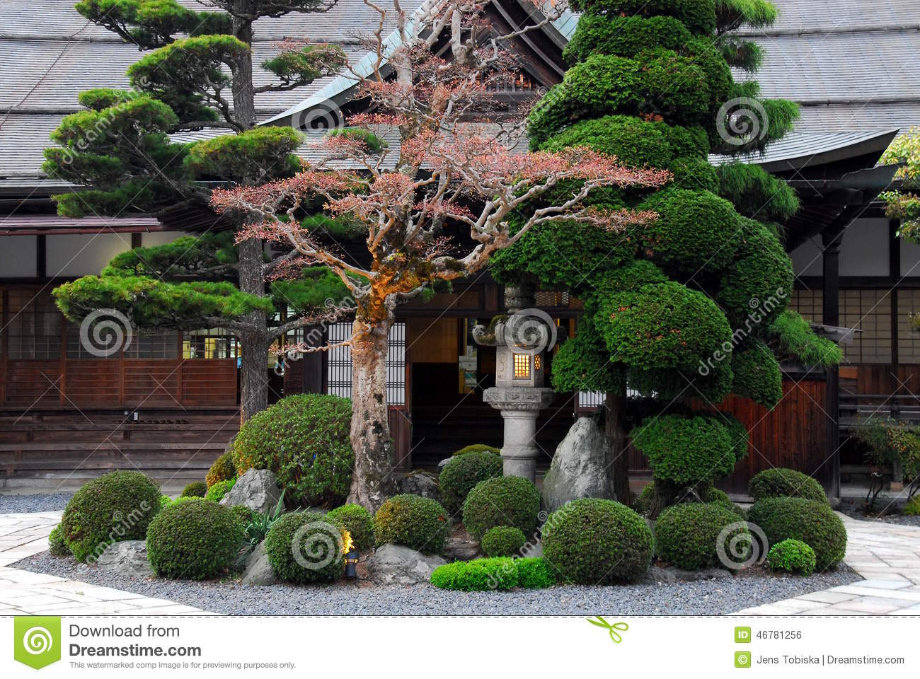 Beautiful japanese garden stock photo image of japan for Small trees for japanese garden