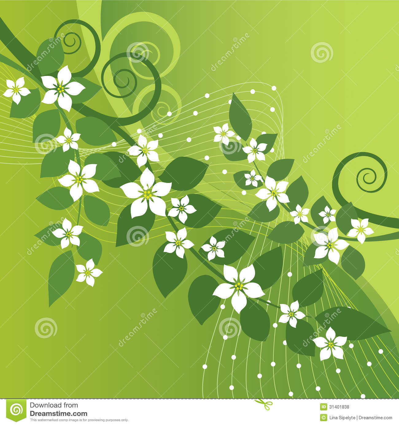 Jasmine Flower Vector Free Download Jasmine Flower Vector Free