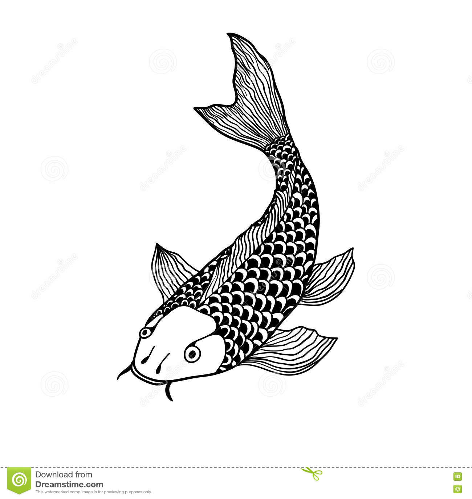 Carp fish illustration cartoon vector for Koi fish representation