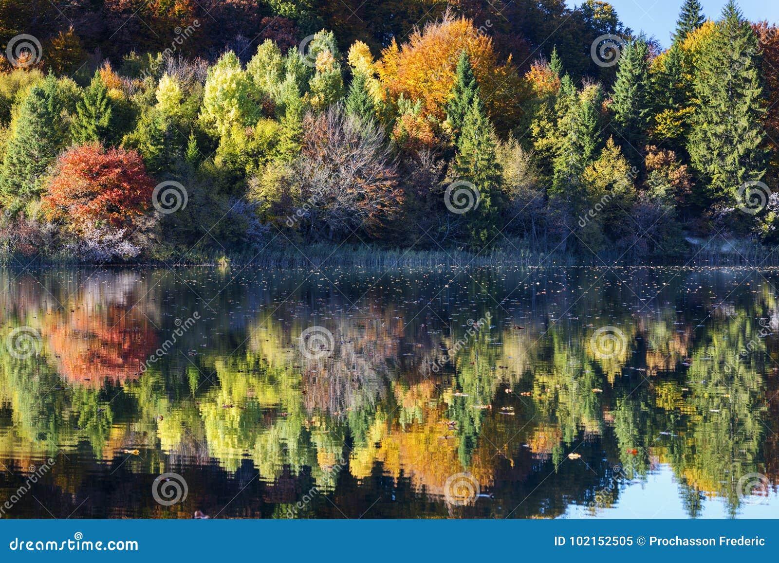 Beautiful lake in Plitvice National Park