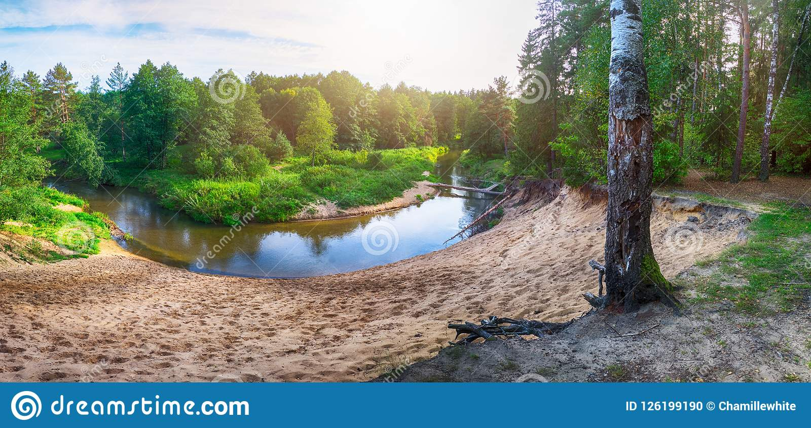 Beautiful Landscape Of Forest River With Reflections Of