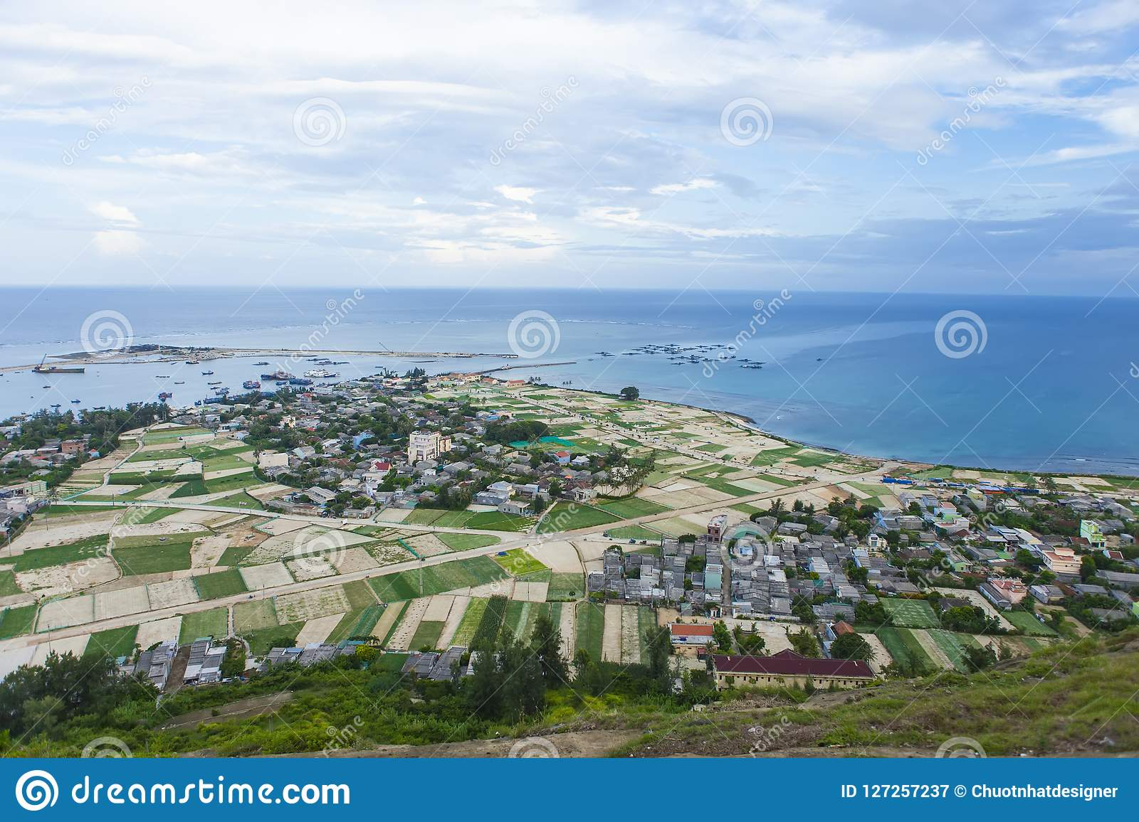 Beautiful Landscape With Garlic Field Coconut And Beach In Lyson Island Quang Ngai Vietnam Stock Image Image Of Industry Guitar 127257237