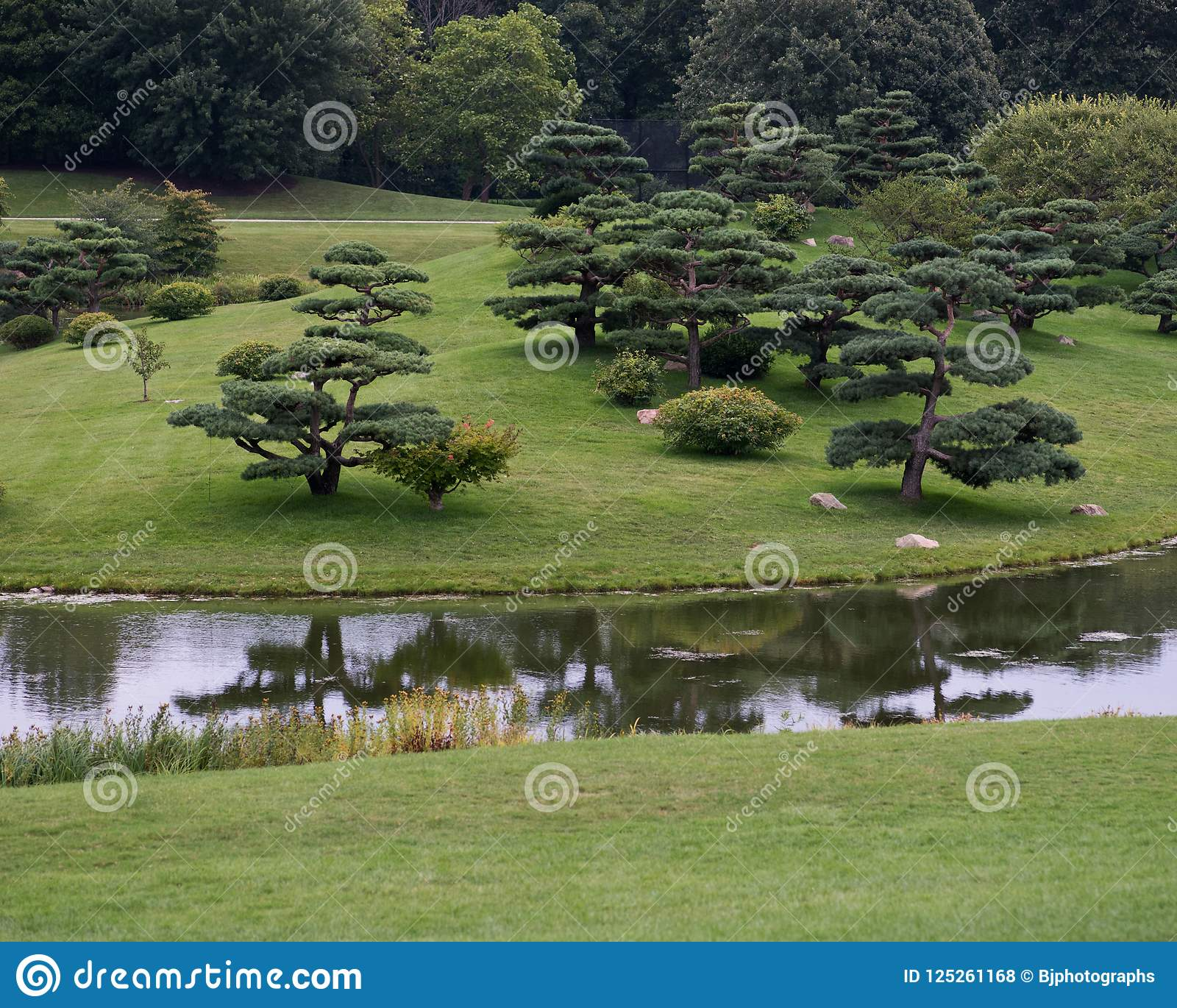 Beautiful landscape in Japanese garden