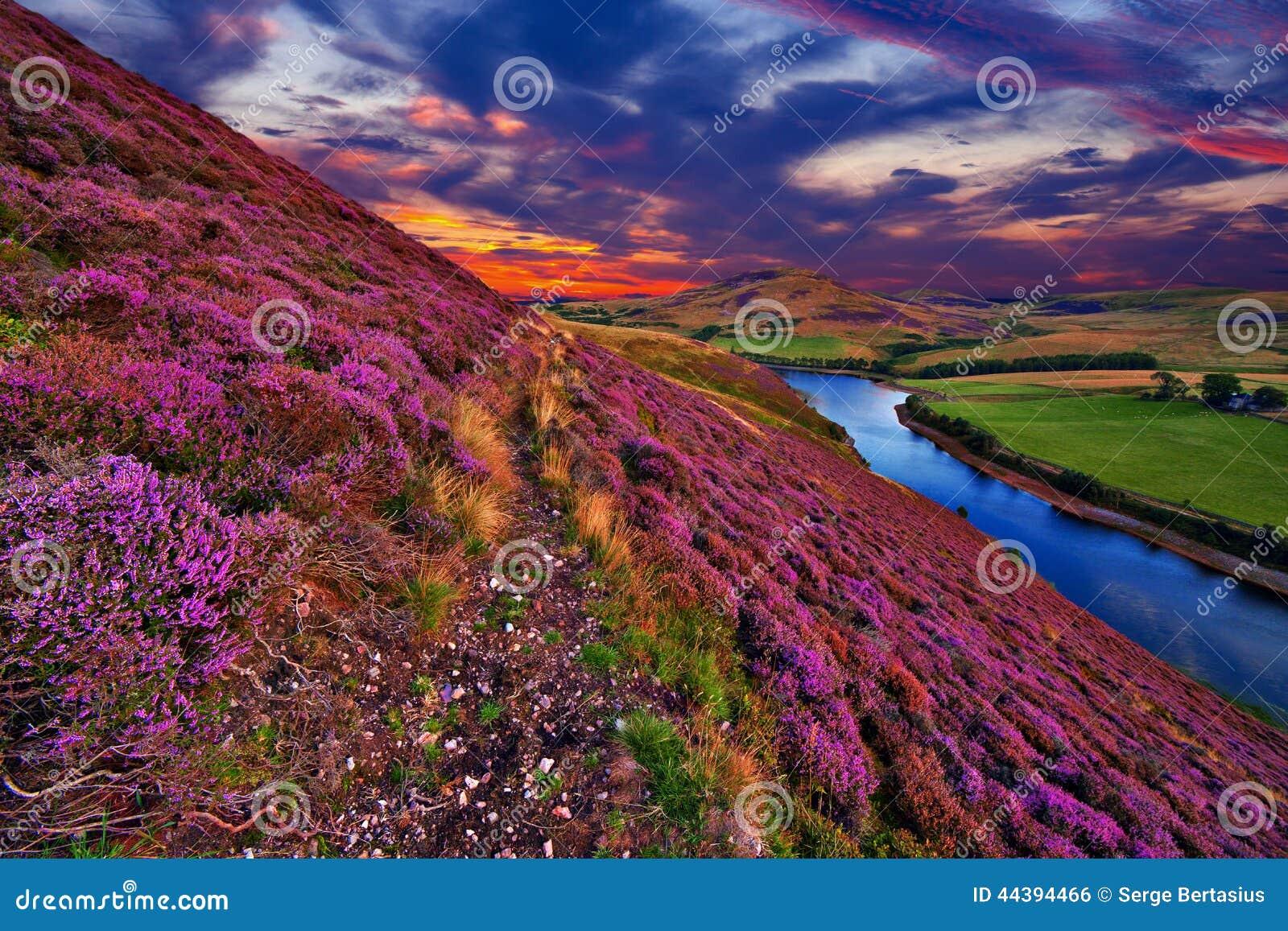 Beautiful landscape of scottish nature