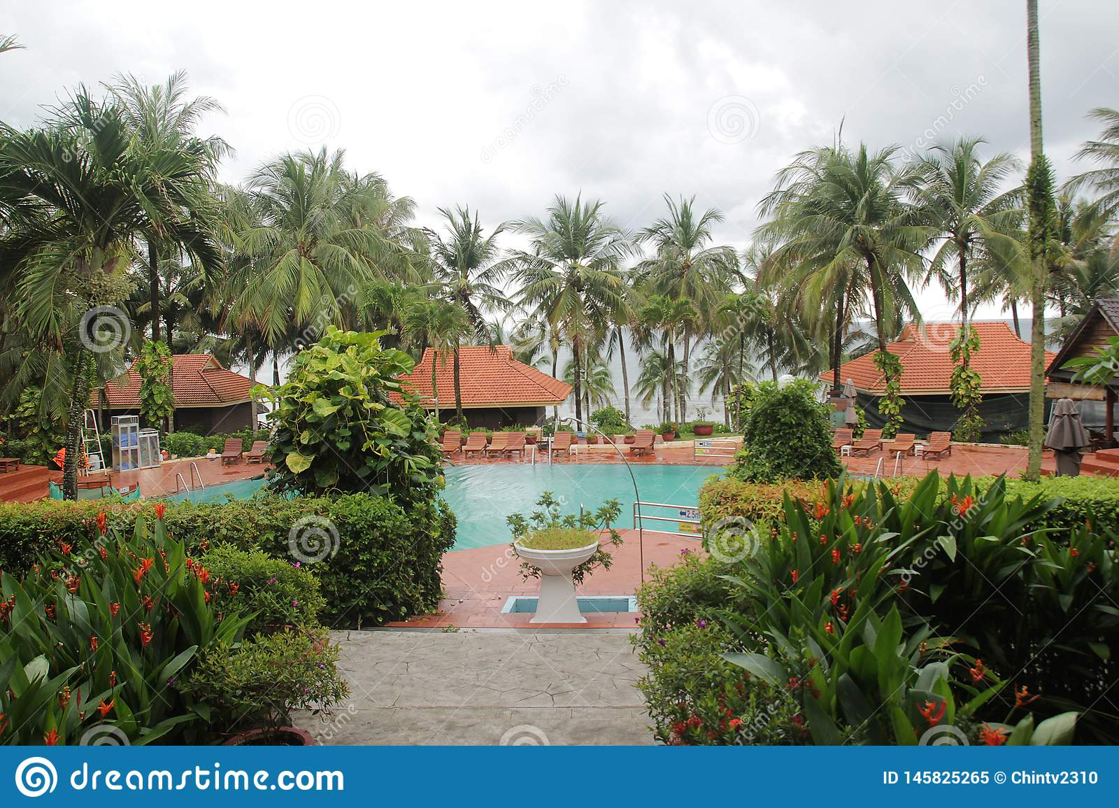 Beautiful landscape with swimming pool and coconut trees around