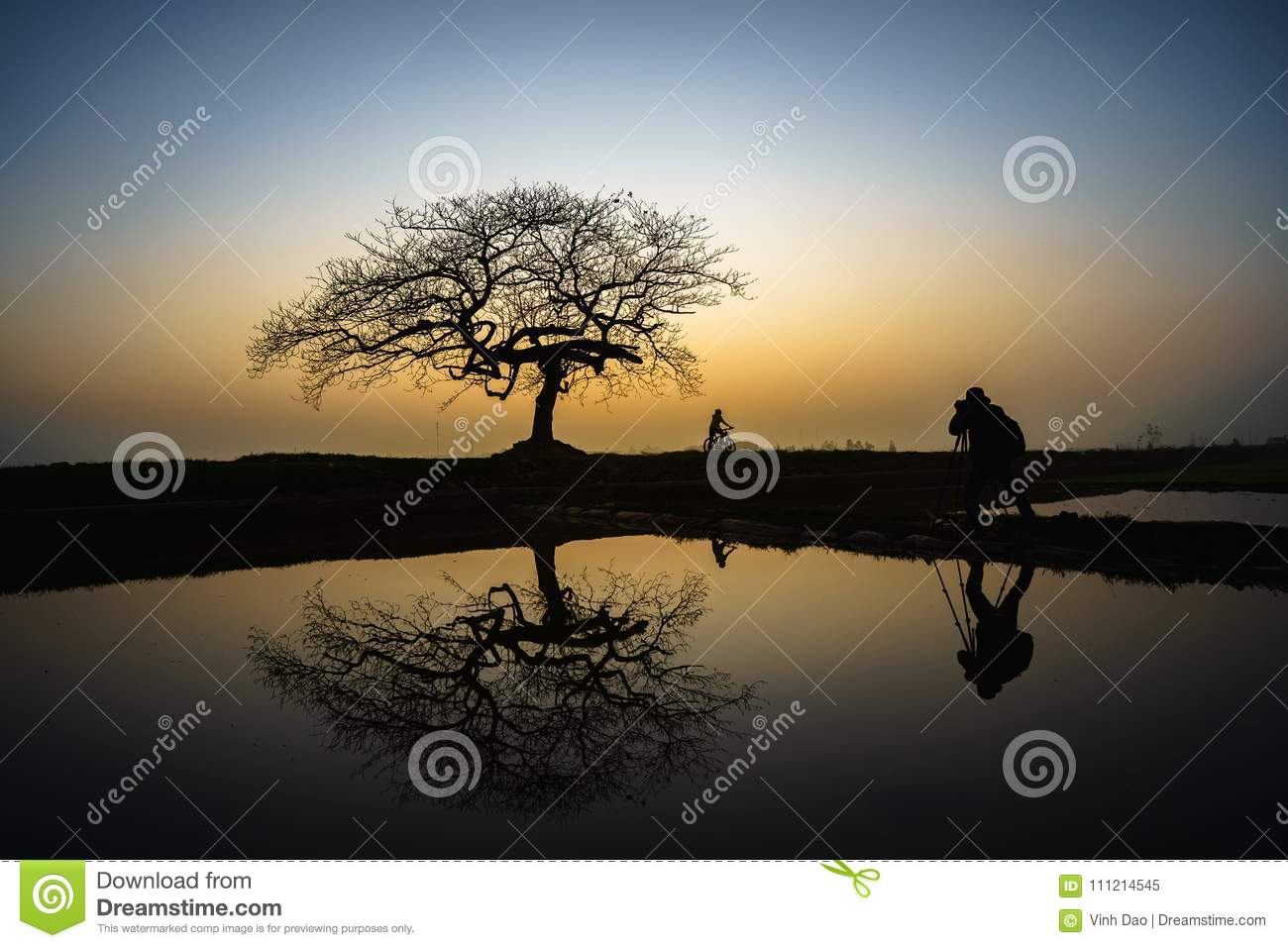 Beautiful landscape with tree silhouette and reflection at sunset with alone girl and bike under the