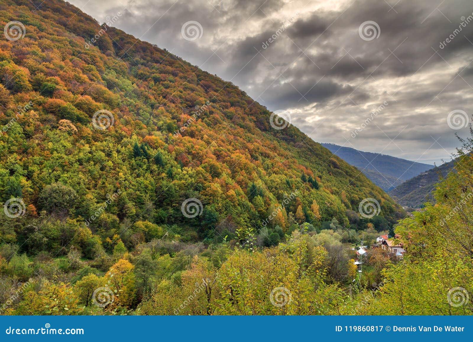 Ominous autumn colors