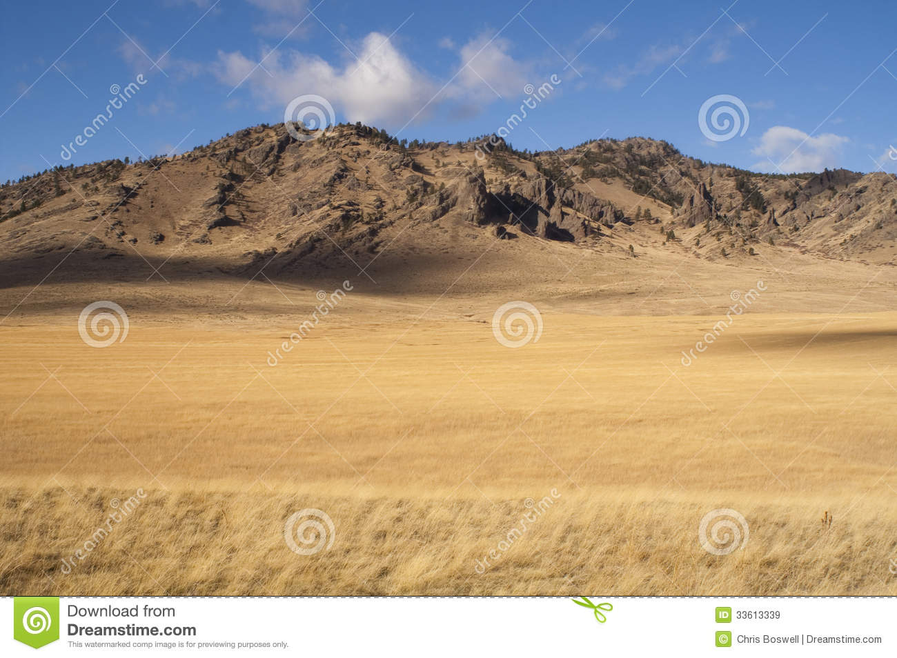 Beautiful landscape western united states idaho grass land for States with free land