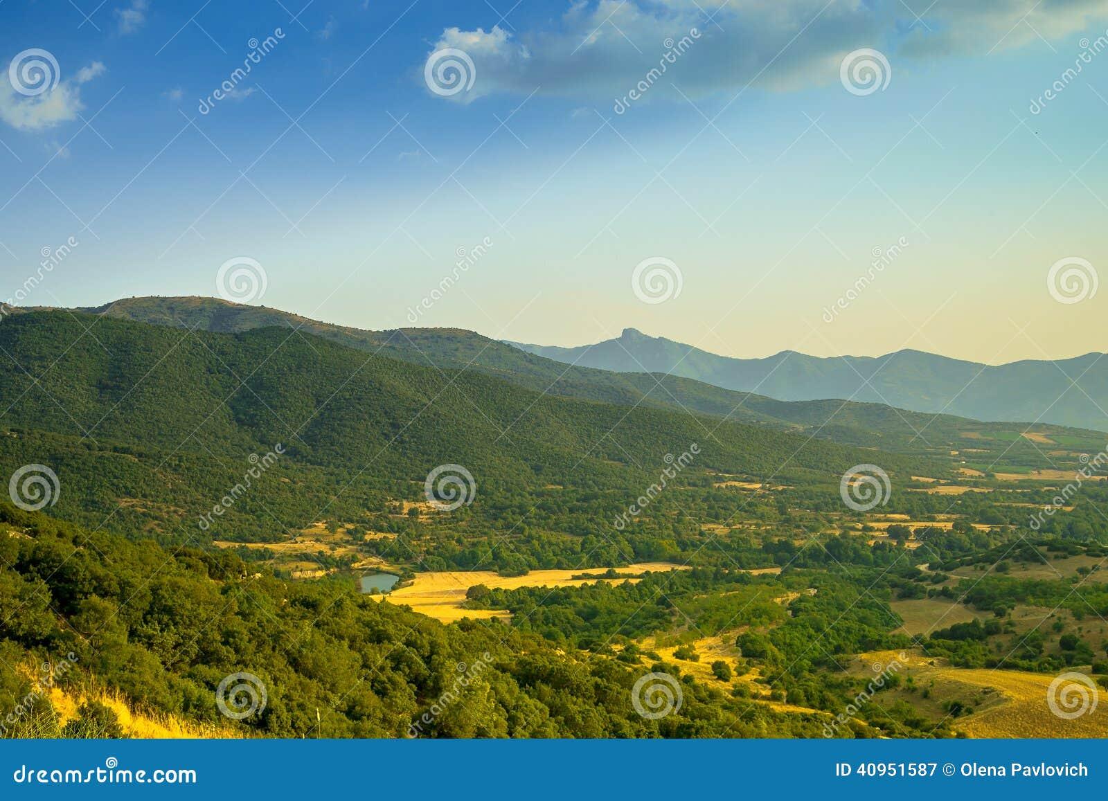 beautiful yellow field landscape - photo #21
