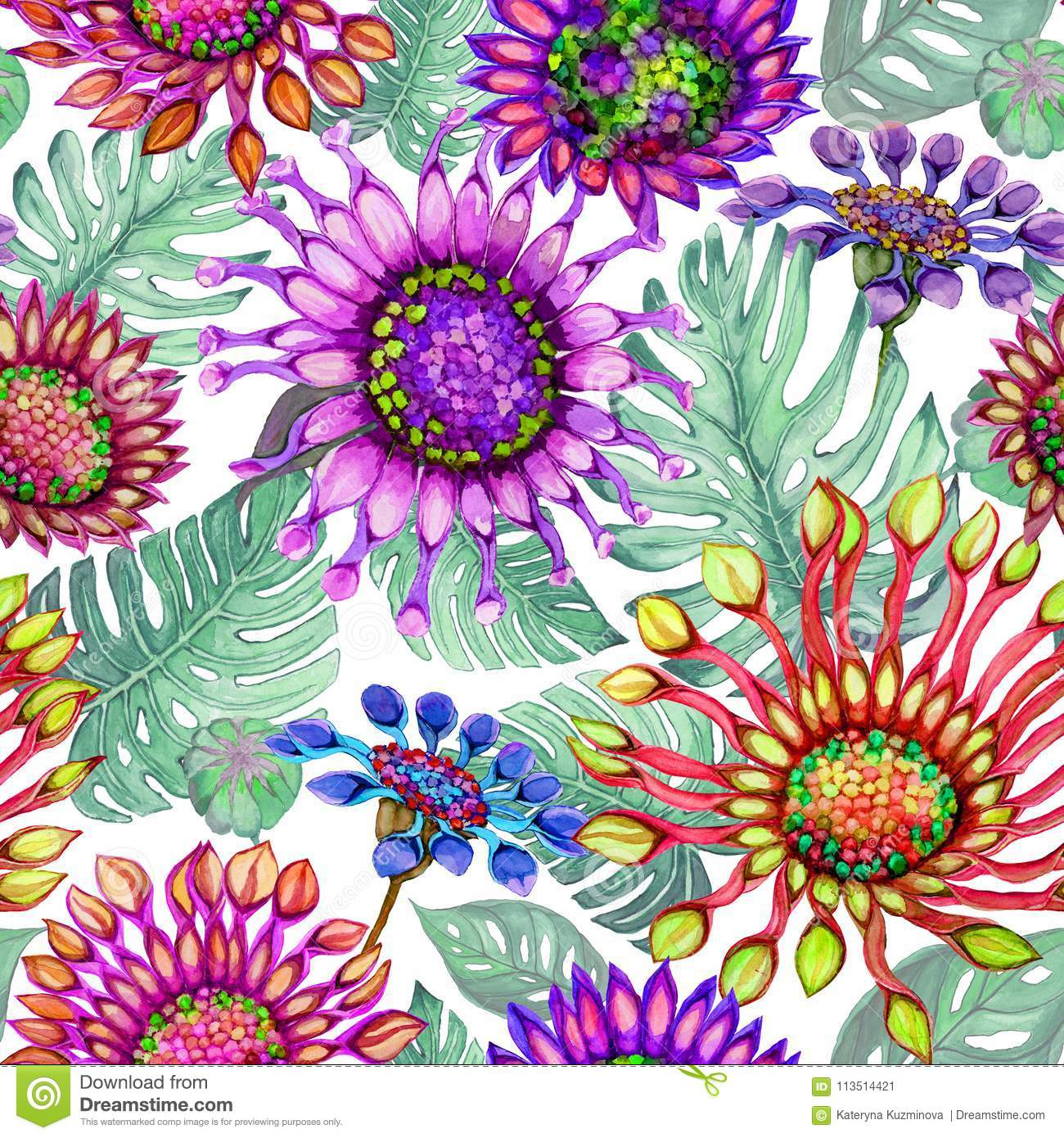 Beautiful large vivid African daisy flowers with green monstera leaves on white background. Seamless bright floral pattern.