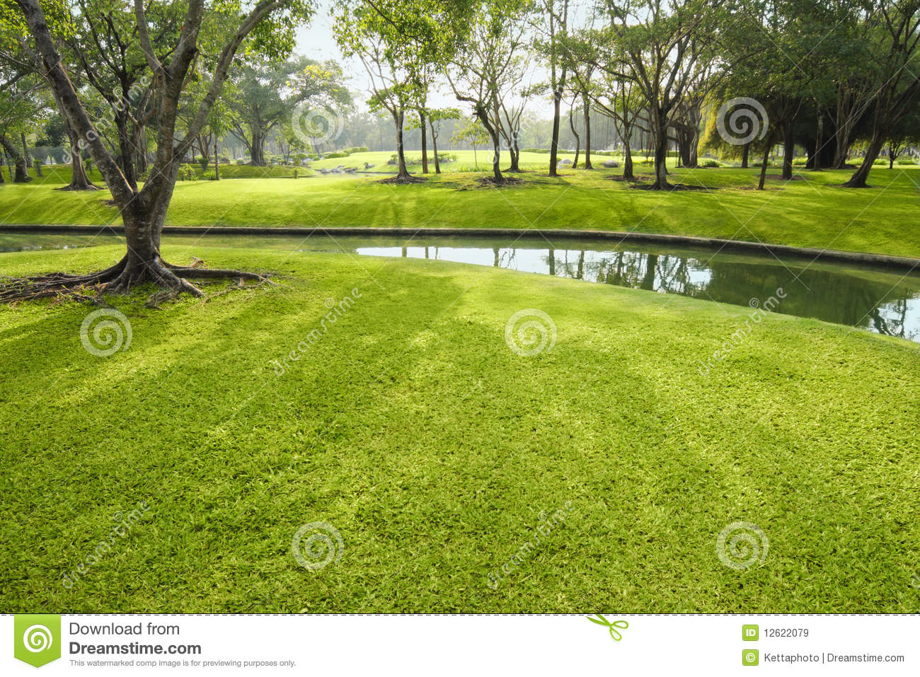 Beautiful lawn stock image image of canal grass for Pretty grass