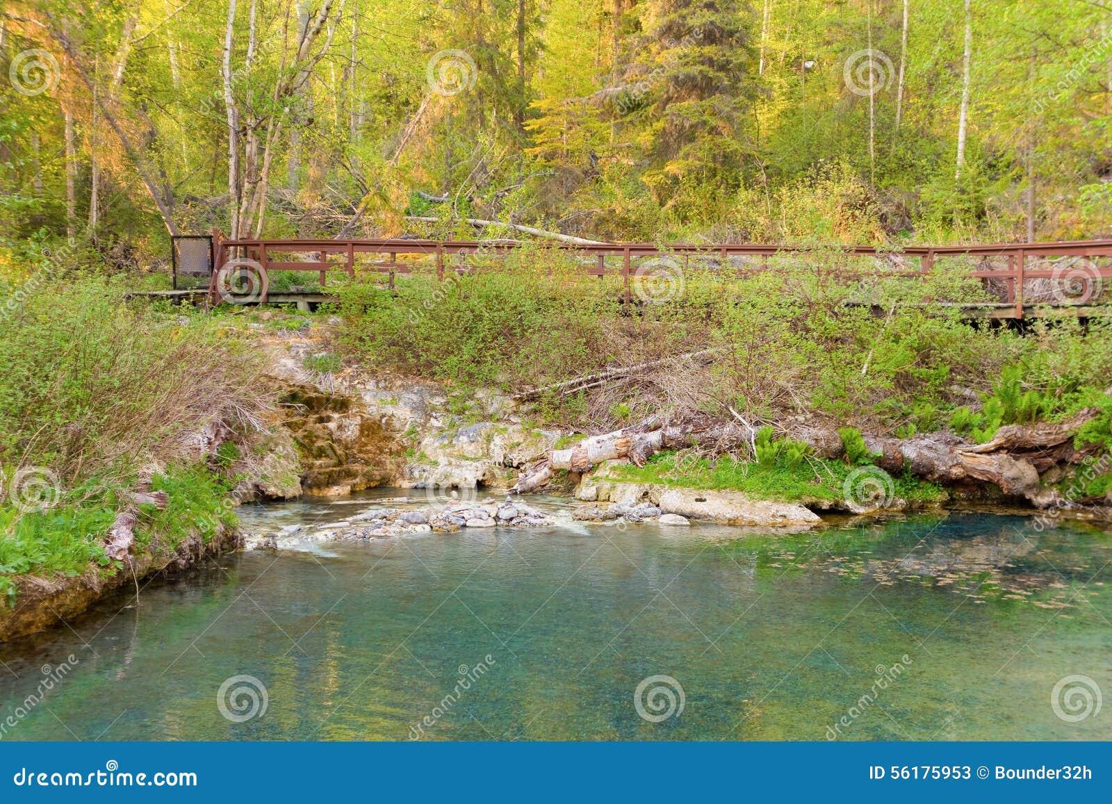 Natural Elements Images