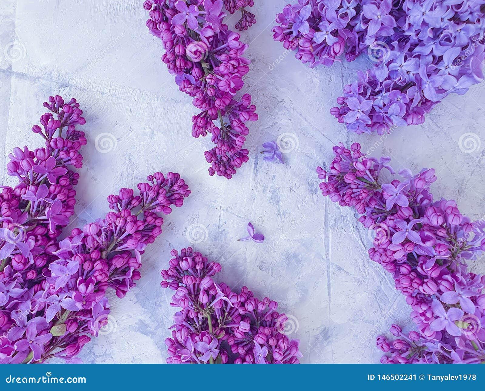 Beautiful lilac natural celebration romantic bouquetflower invitation on gray concrete background frame