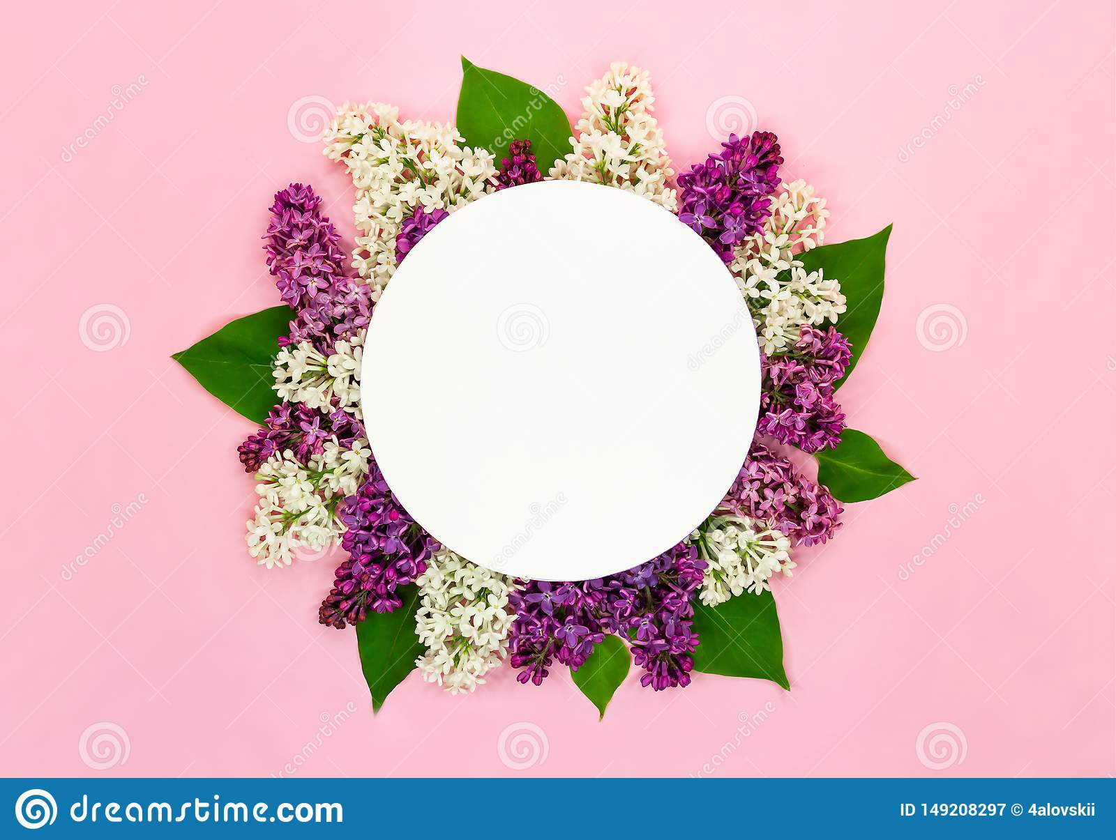 Beautiful lilac flowers and round blank card on light pink background. Syringa blossoms. Romantic summer greeting card