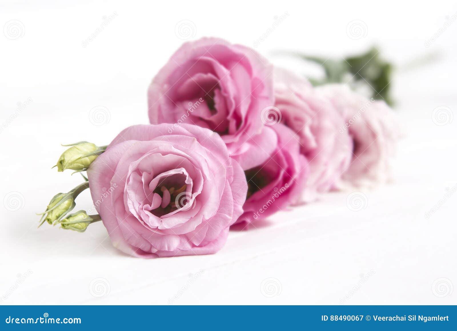 Beautiful Lisianthus Flower Bouquet On White Background Stock Image