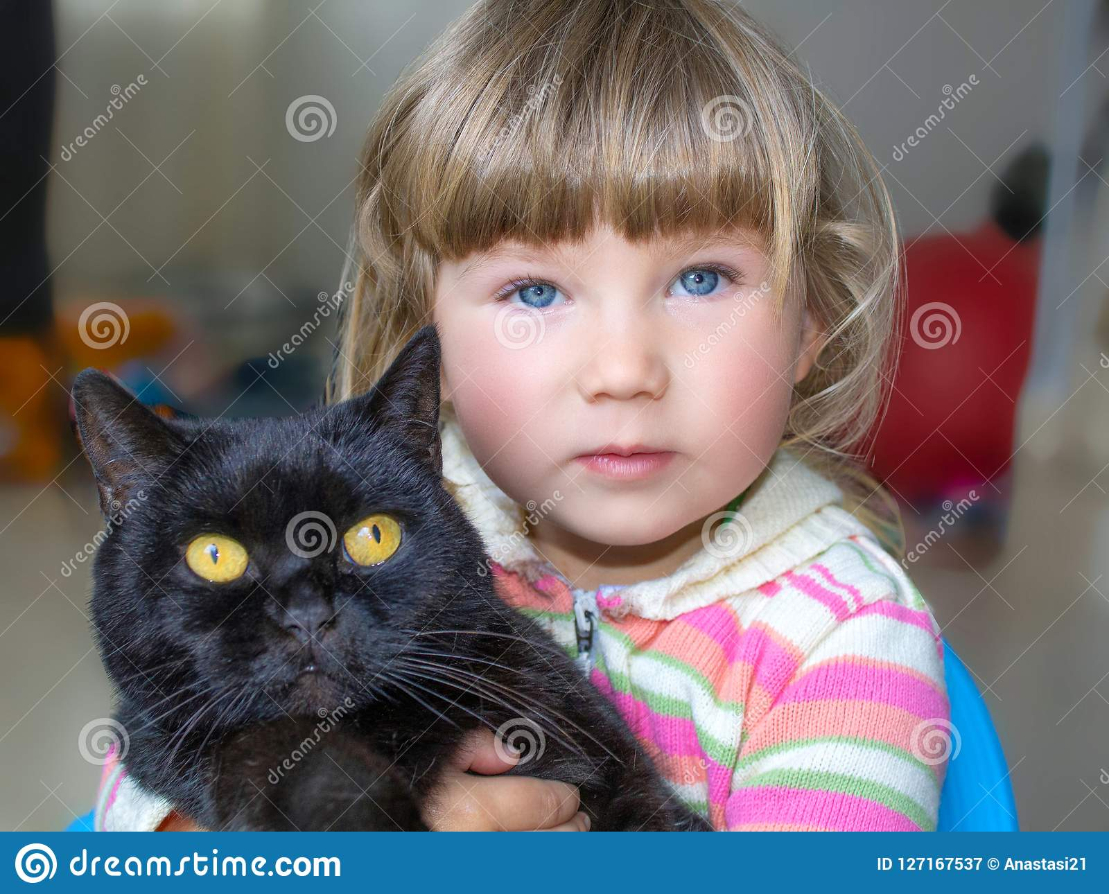 A beautiful little girl with blue eyes is holding a black cat. Friendship with pets.