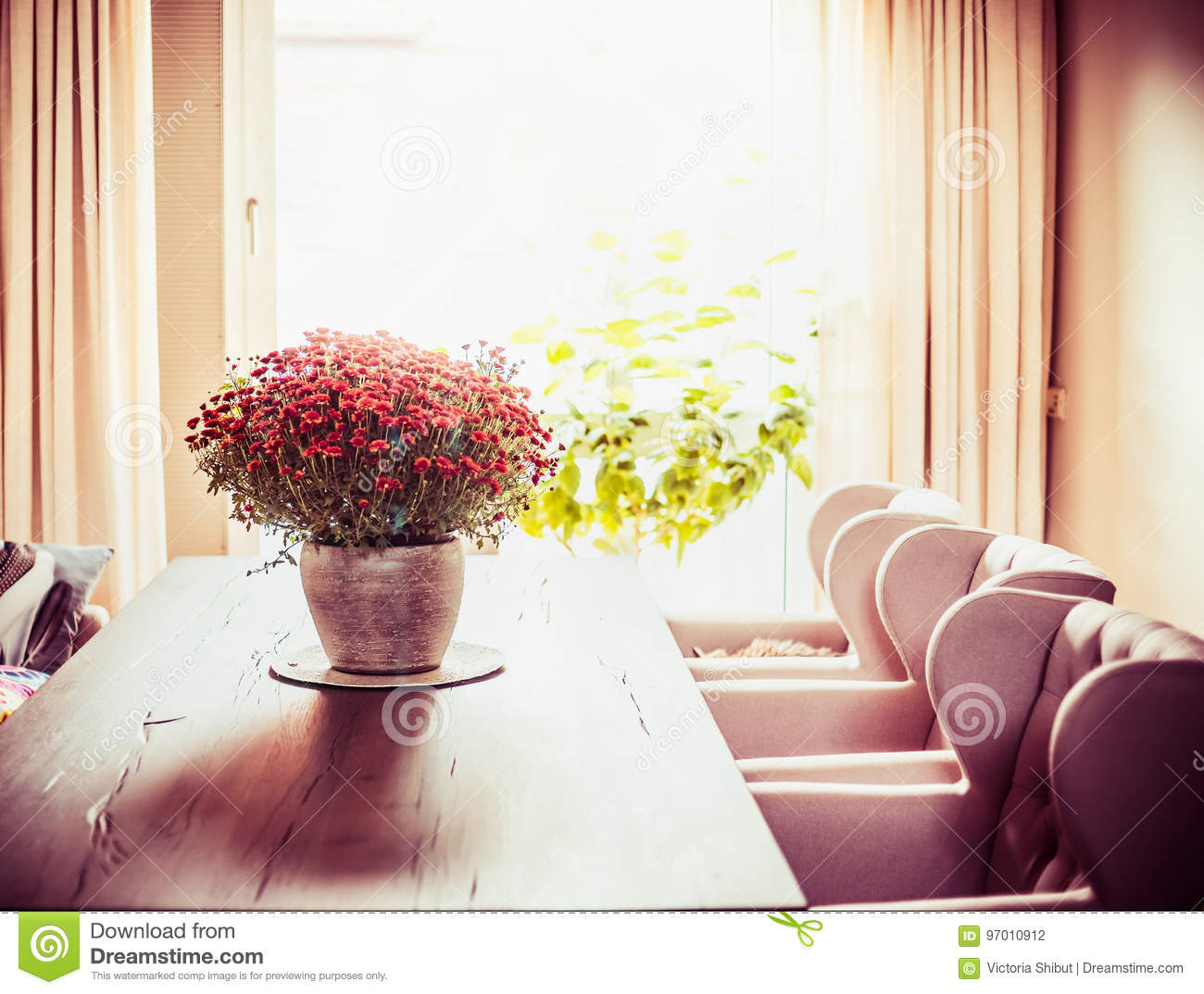Beautiful Living Room With Chrysanthemums Flowers Bunch On Dinner ...