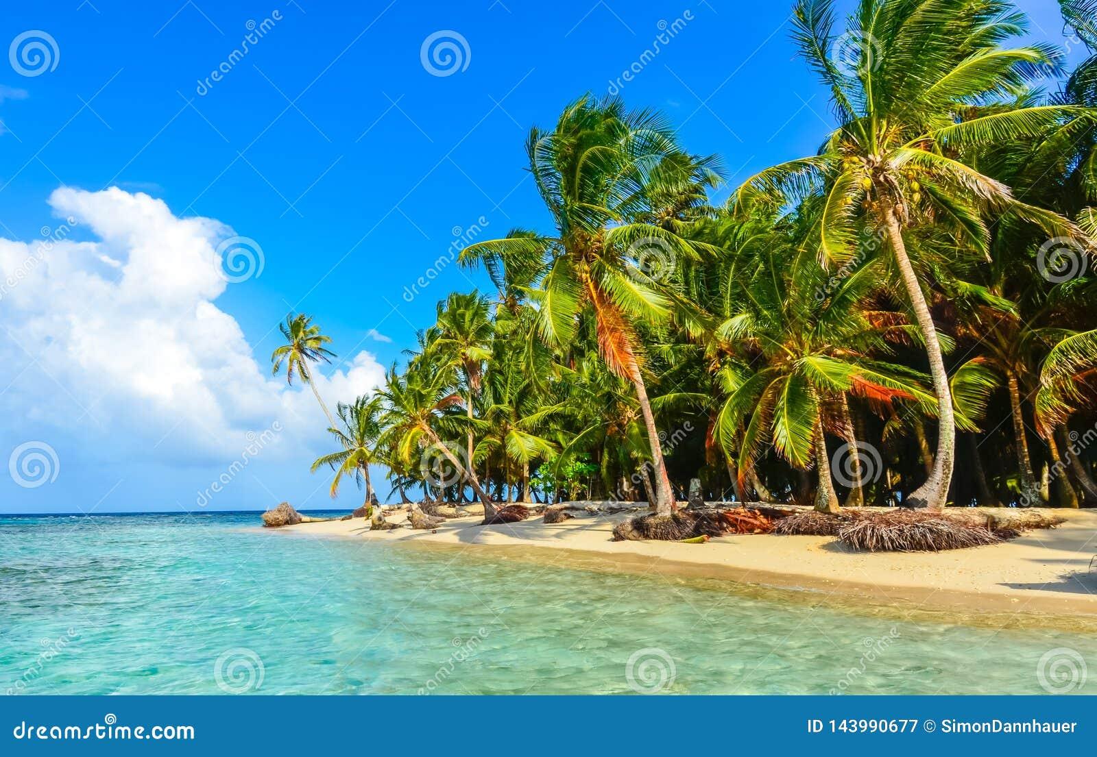 Beautiful Lonely Beach In Caribbean San Blas Island Kuna Yala Panama Turquoise Tropical Sea Paradise Travel Destination Stock Image Image Of Exotic Relaxation 143990677
