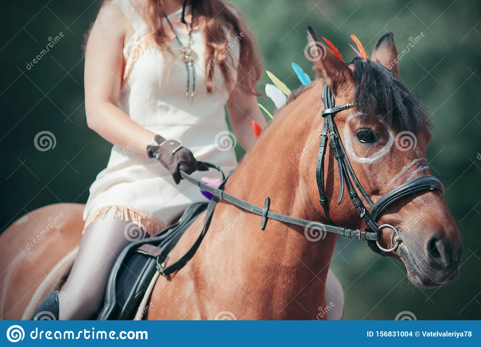 156 Horse Indian Painted Photos Free Royalty Free Stock Photos From Dreamstime