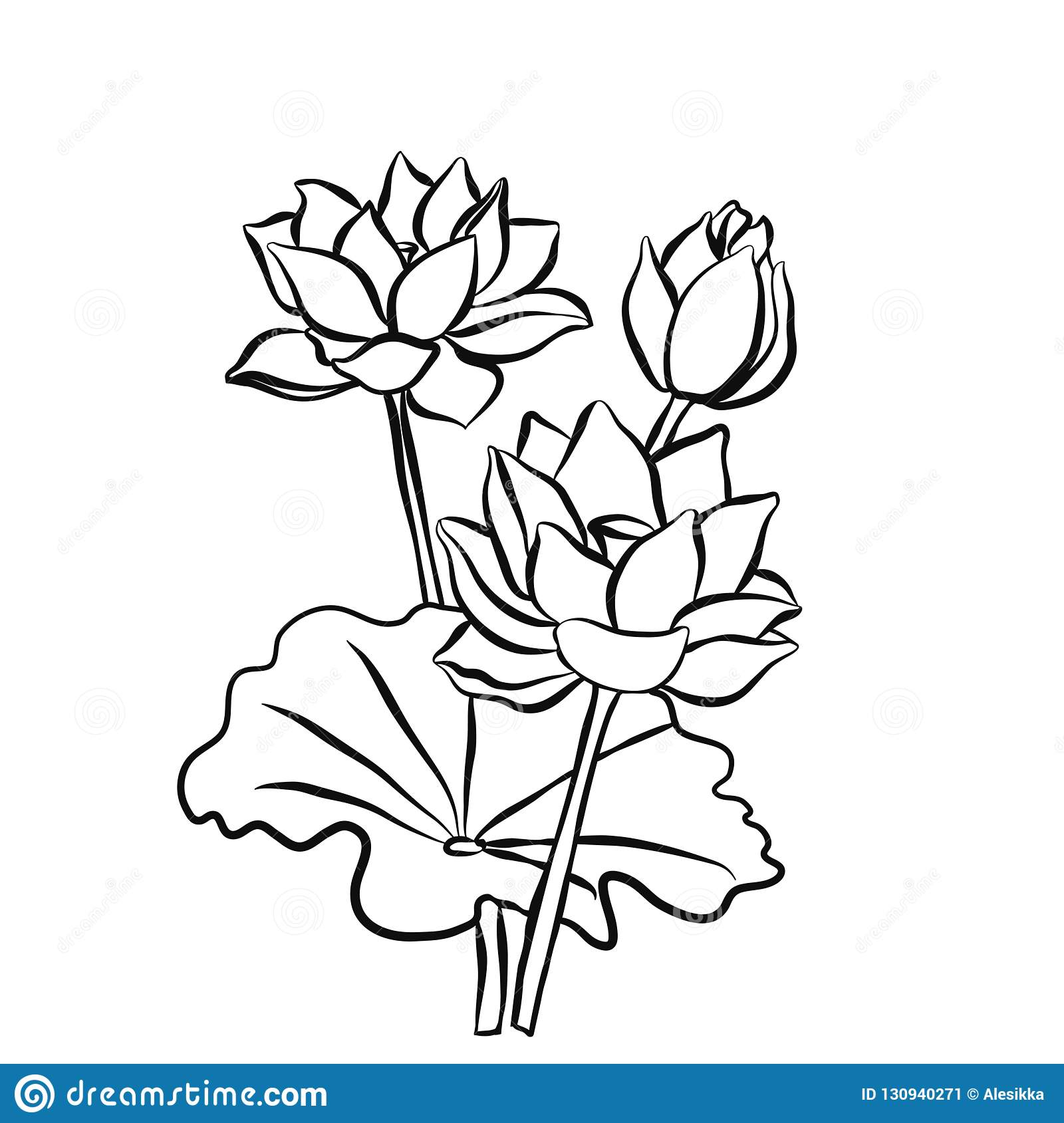 Beautiful Lotus Flowers Black White Isolated Sketch Stock Vector