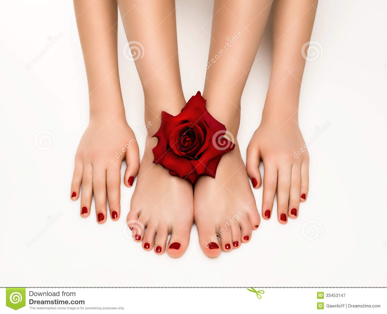 Beautiful Manicure And Pedicure With A Rose Royalty Free