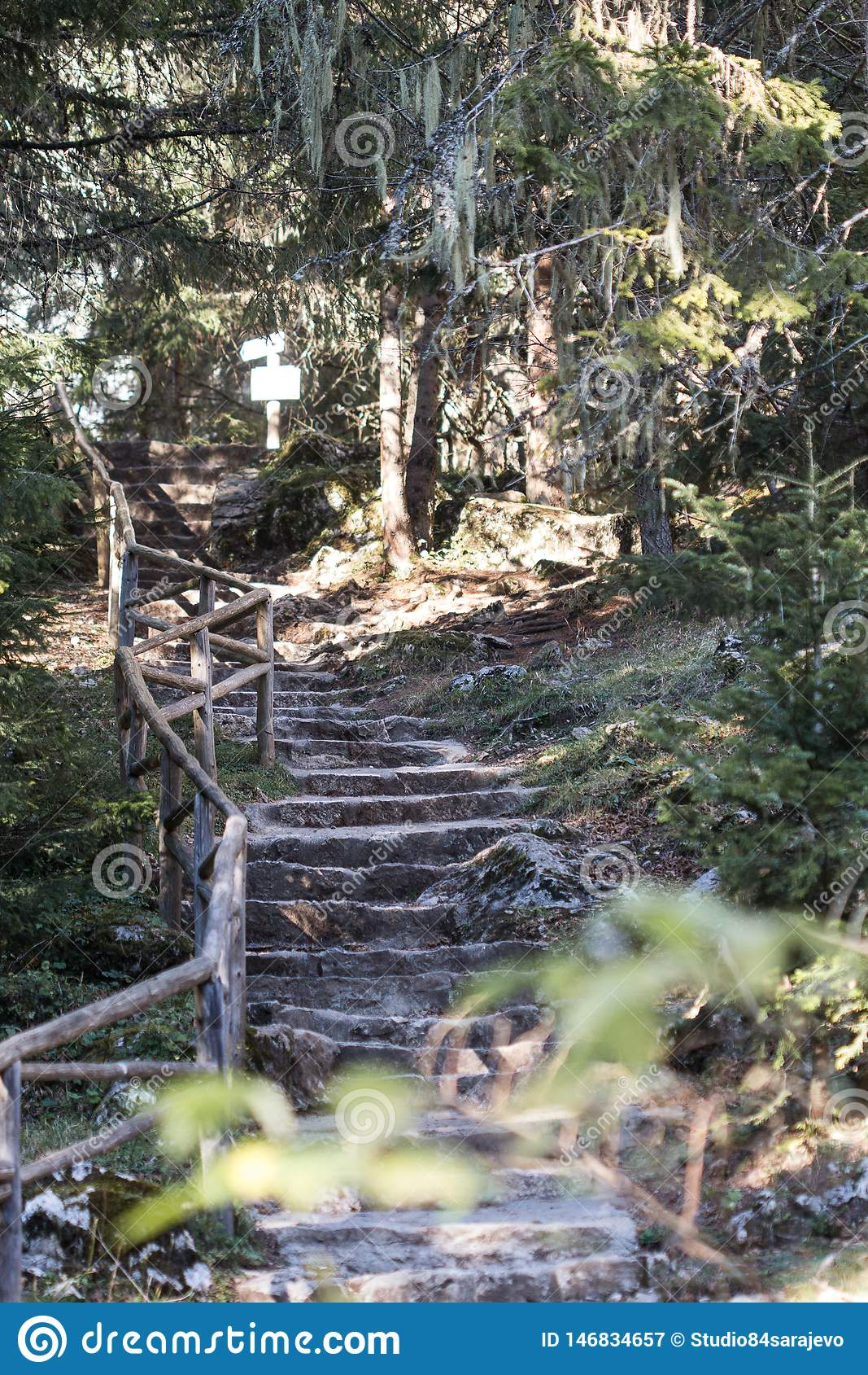 Manmade Stone Stairs in the Forest