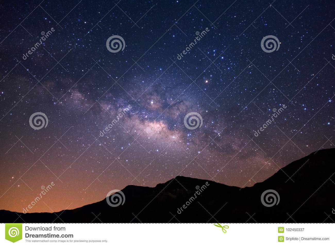 Beautiful milky way galaxy and silhouette of pine tree on a nigh