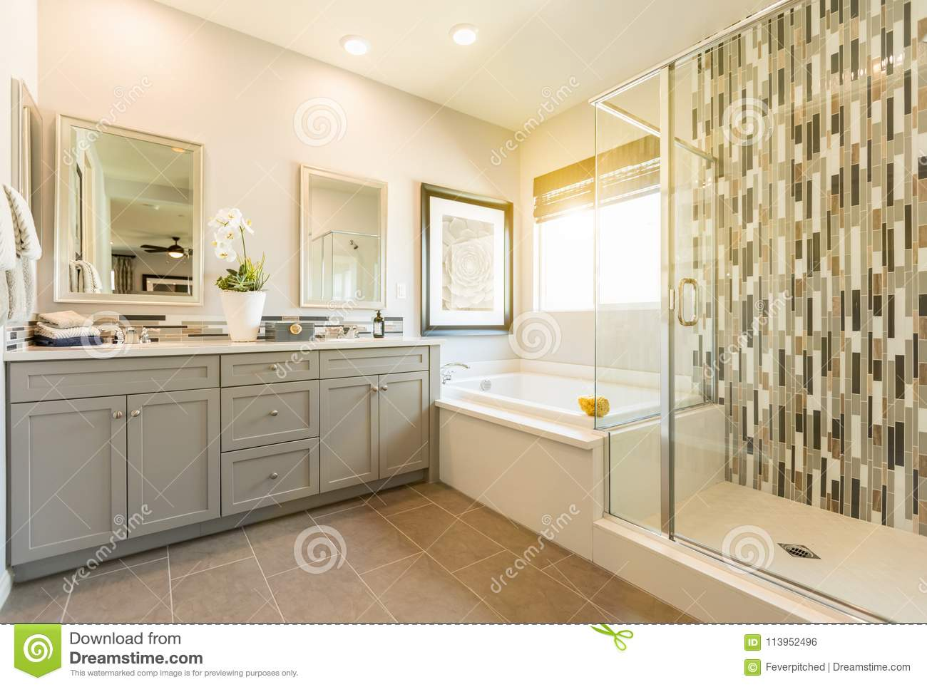 2 699 Master Bathroom Photos Free Royalty Free Stock Photos From Dreamstime