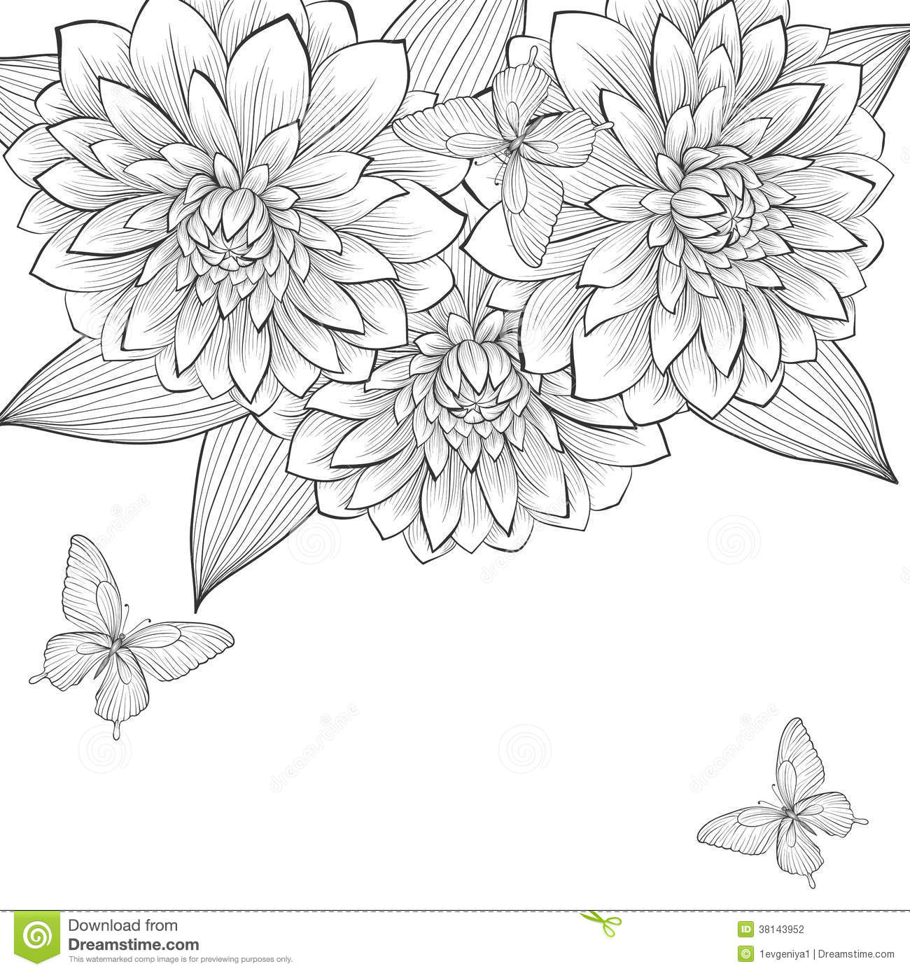 Flower Frame Line Drawing : Beautiful monochrome black and white background with frame