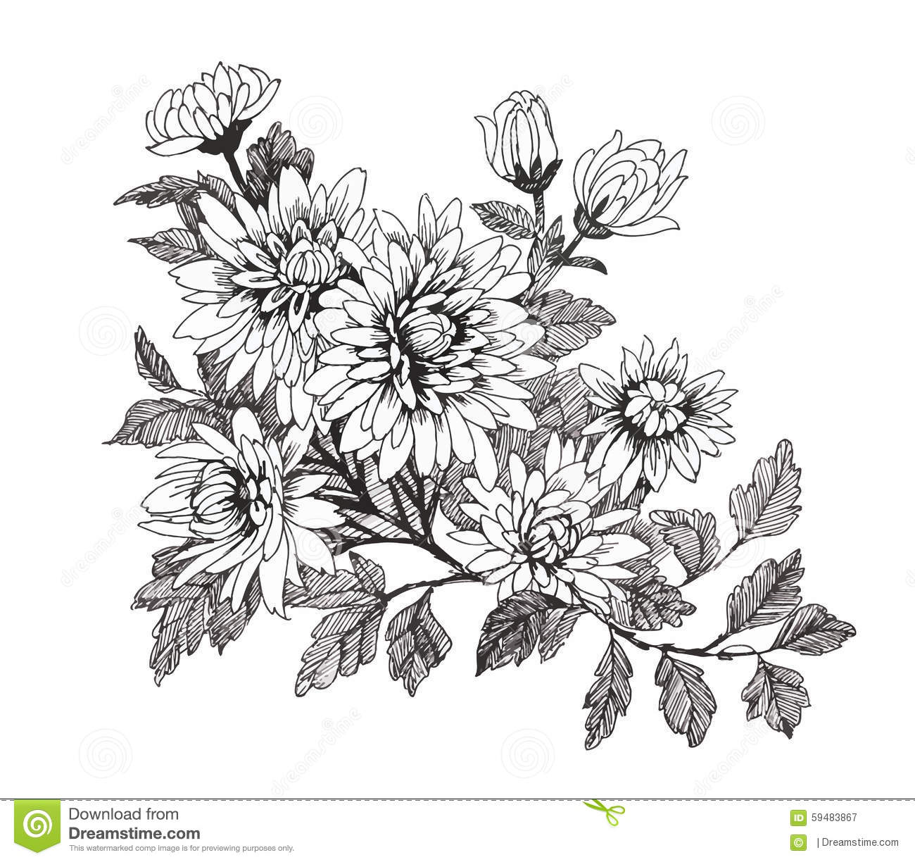 Black And White Line Drawing Flowers : Beautiful black and white flower hand drawing cartoon