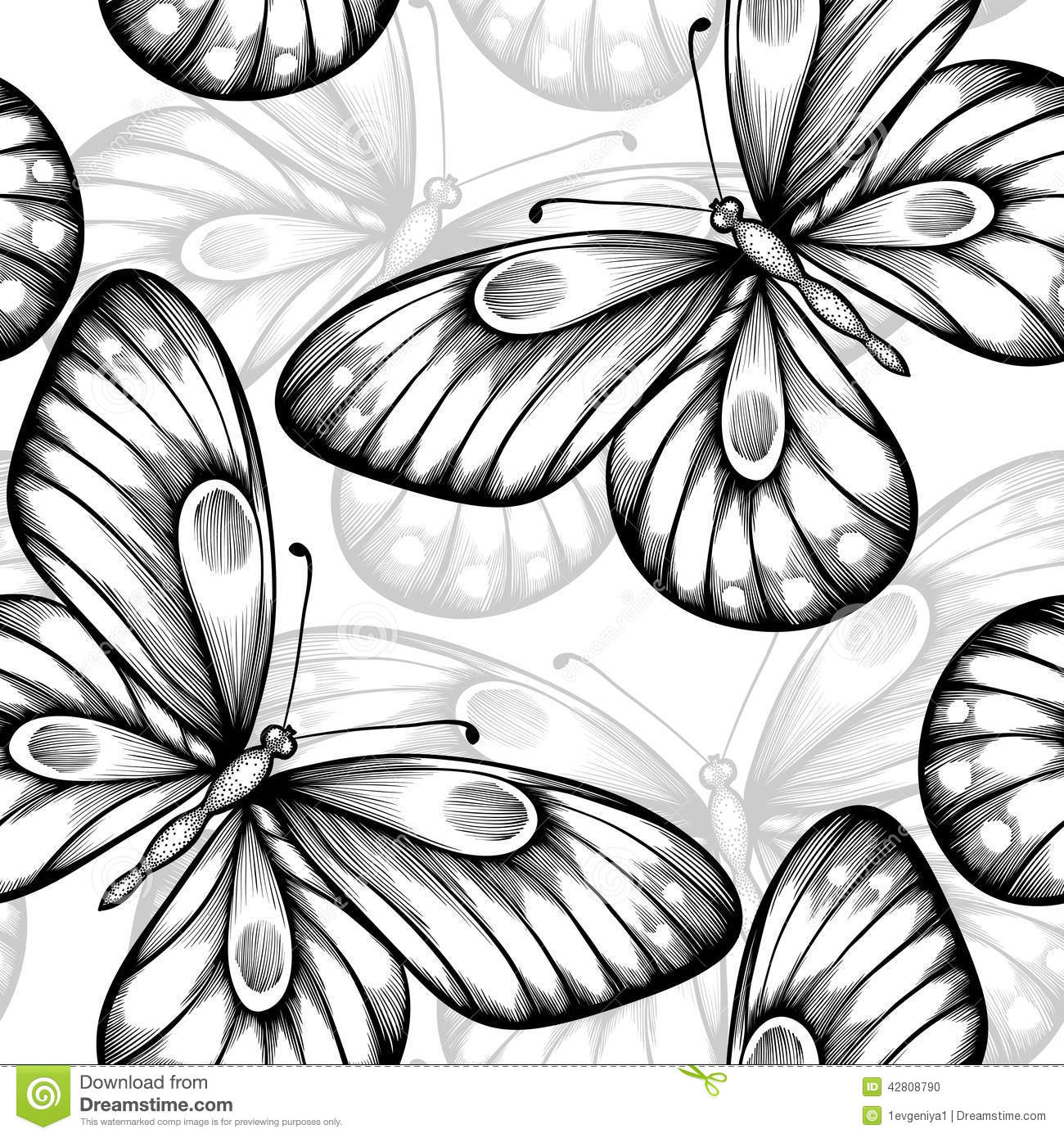 Contour Line Drawing Butterfly : Beautiful monochrome black and white seamless background