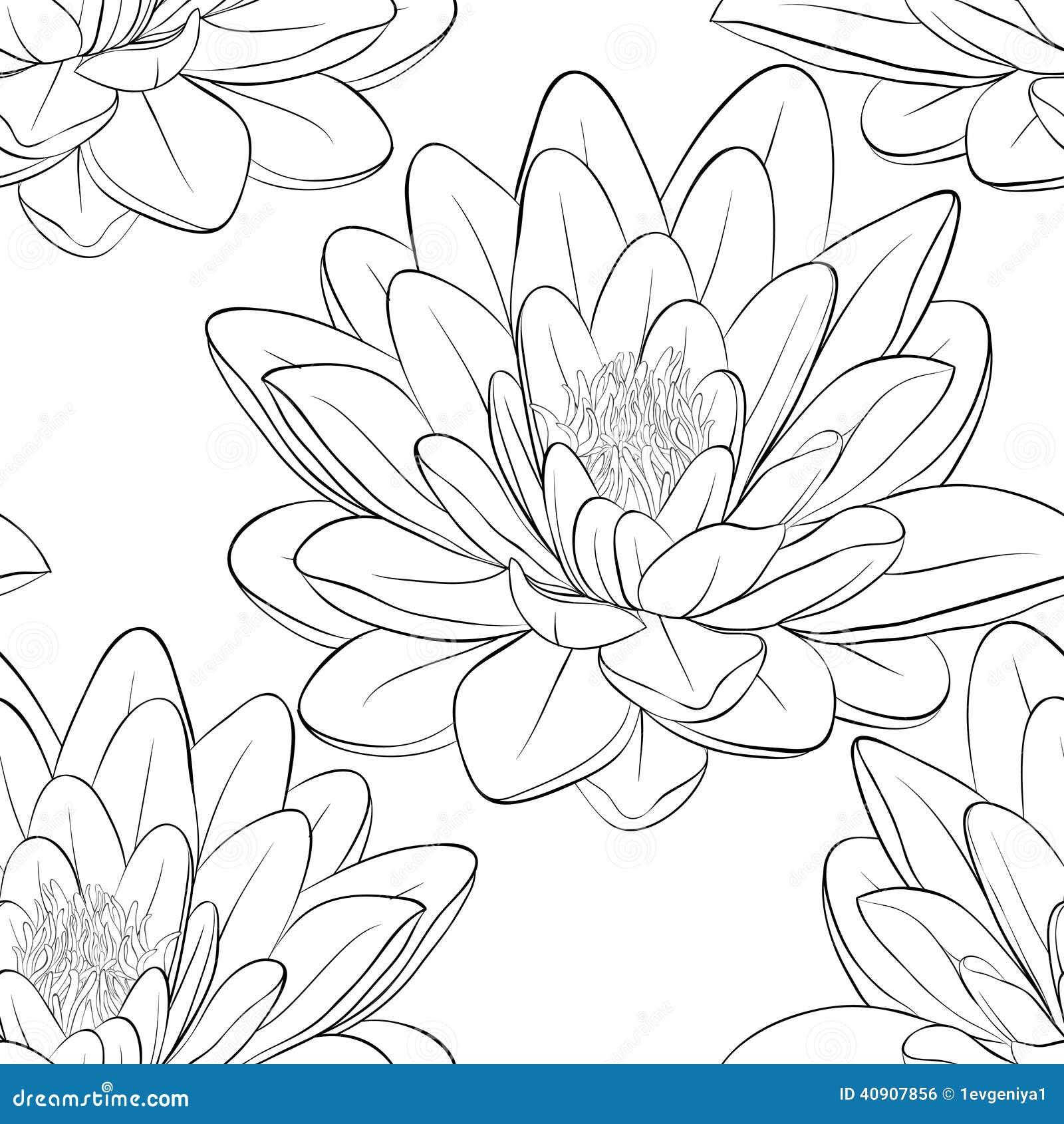 Japanese Flower Line Drawing : Beautiful monochrome black and white seamless pattern