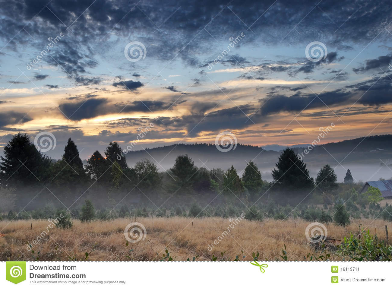 Beautiful Morning Landscape with Fog and a sunrise. HDR. Dramatic